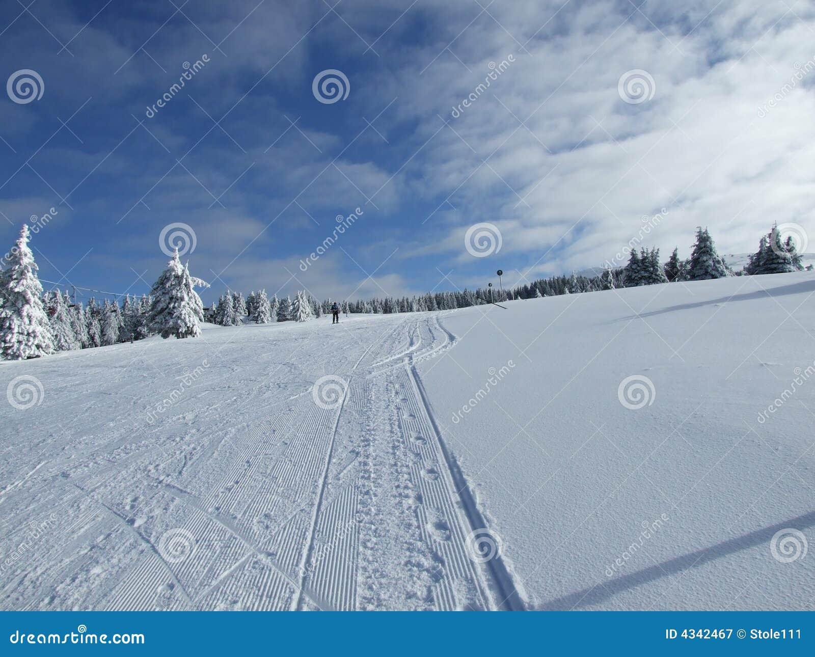 Snow winter scene Kopaonik mountain