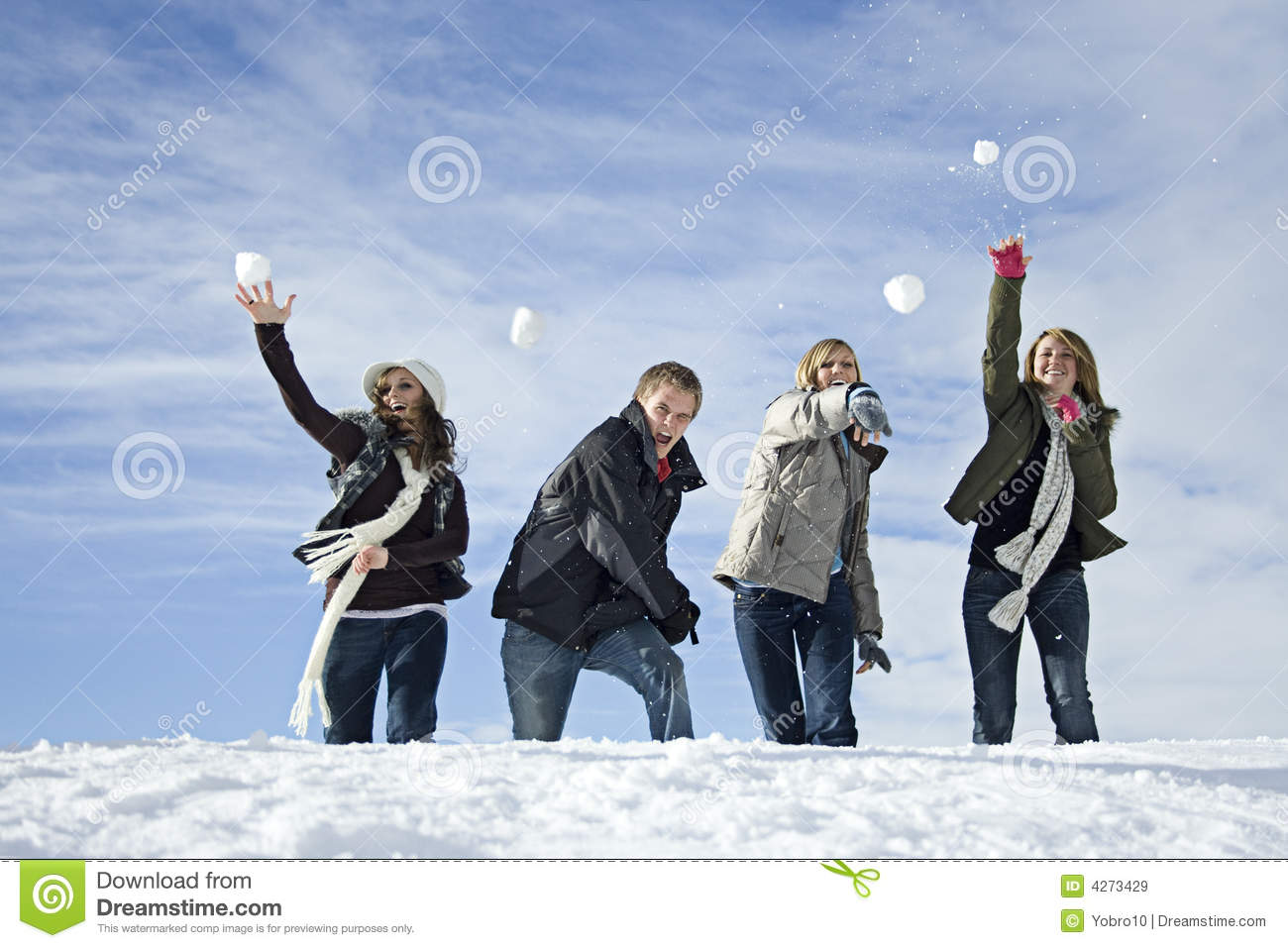 snowball fight royalty free stock images image 4273429