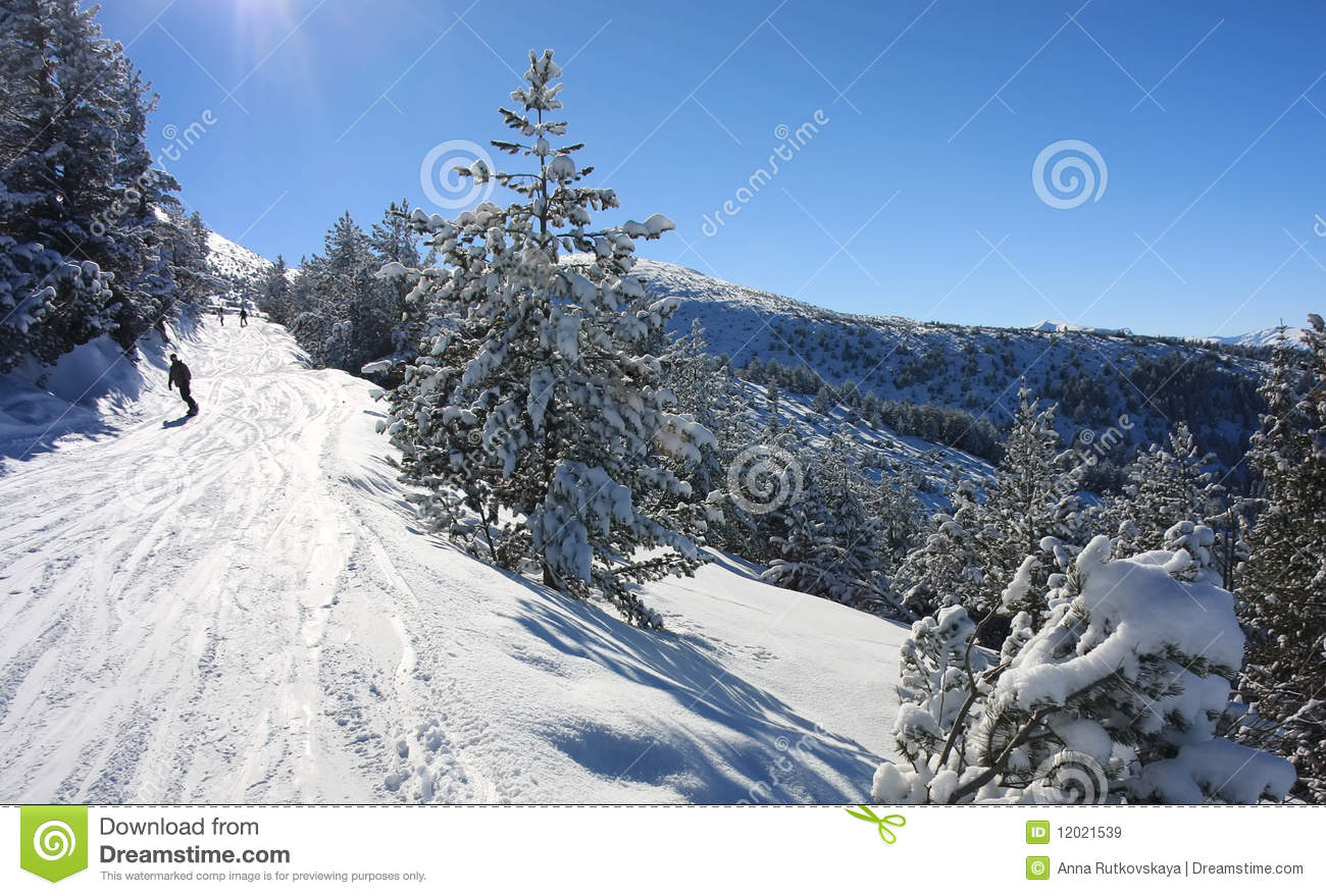 Borovets Bulgaria  City pictures : Snowboarding In Bulgaria. Ski Resort Borovets Royalty Free Stock ...