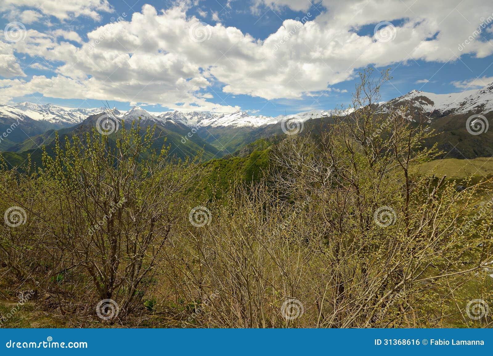 Snowcapped Imágenes De Stock Snowcapped Fotos De Stock: Snowcapped Alpine Arc In Spring Royalty Free Stock Image