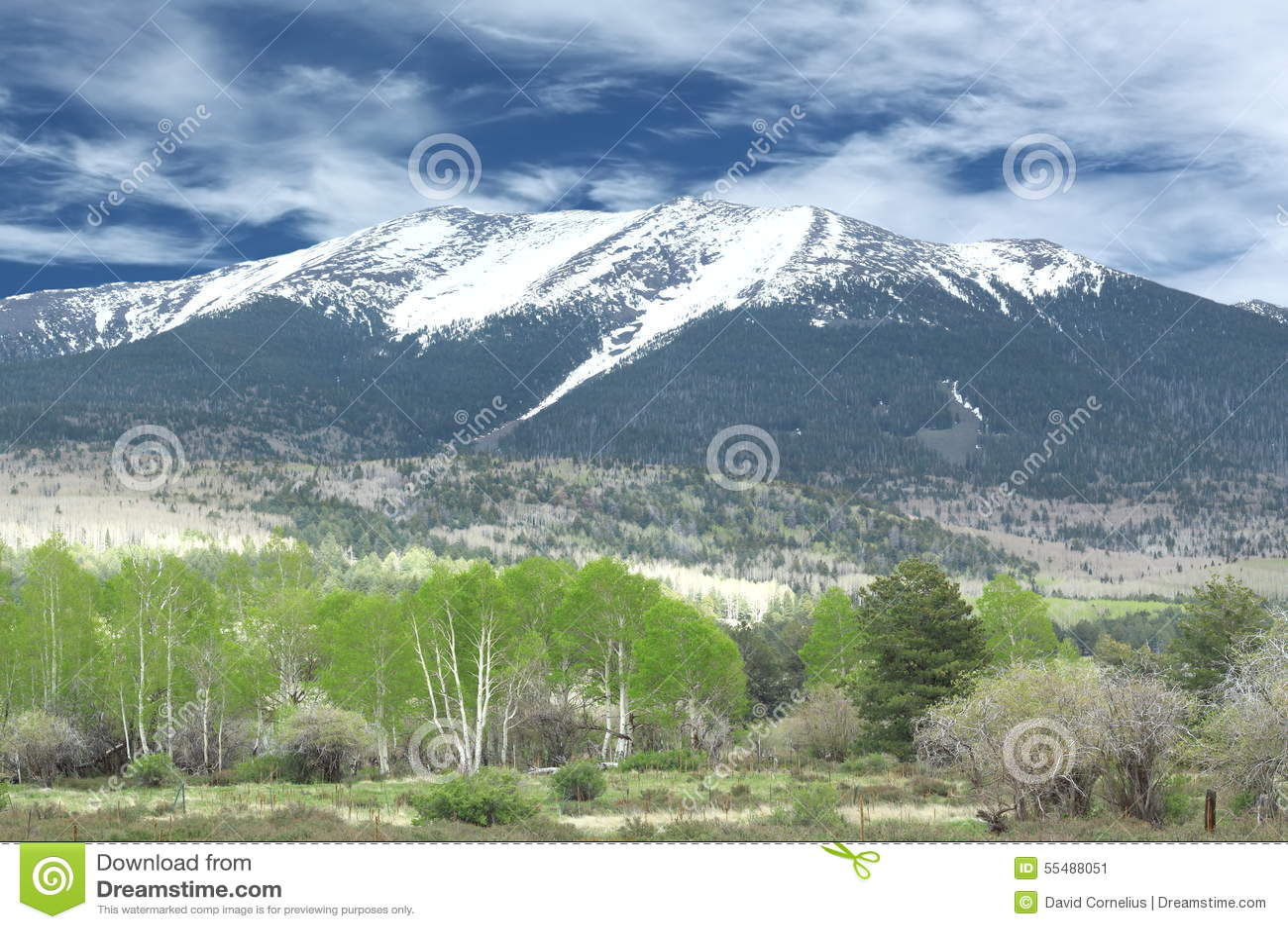 Snowcapped berg