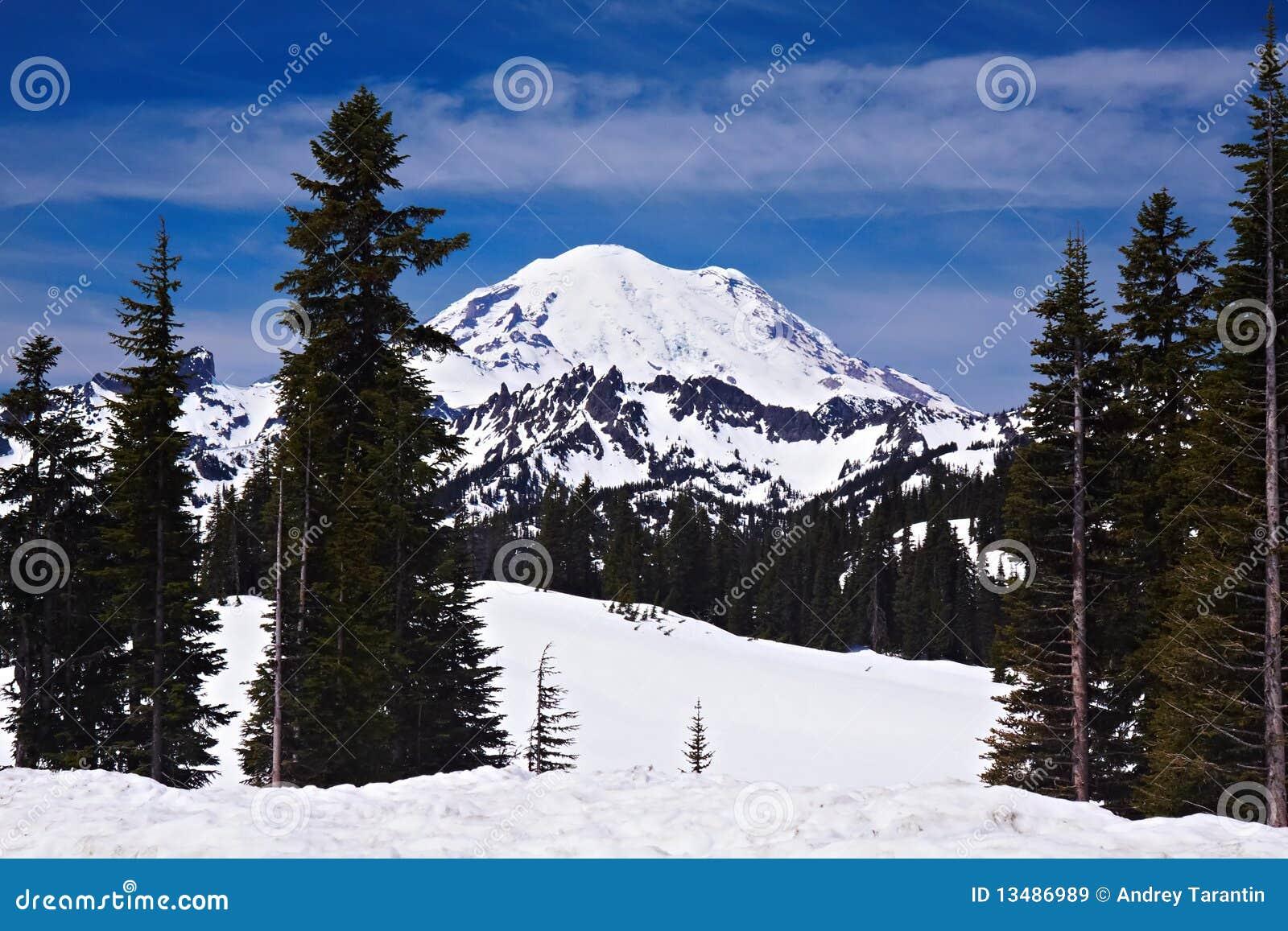 Snowcapped Imágenes De Stock Snowcapped Fotos De Stock: Snowcapped Mount Rainier Royalty Free Stock Images