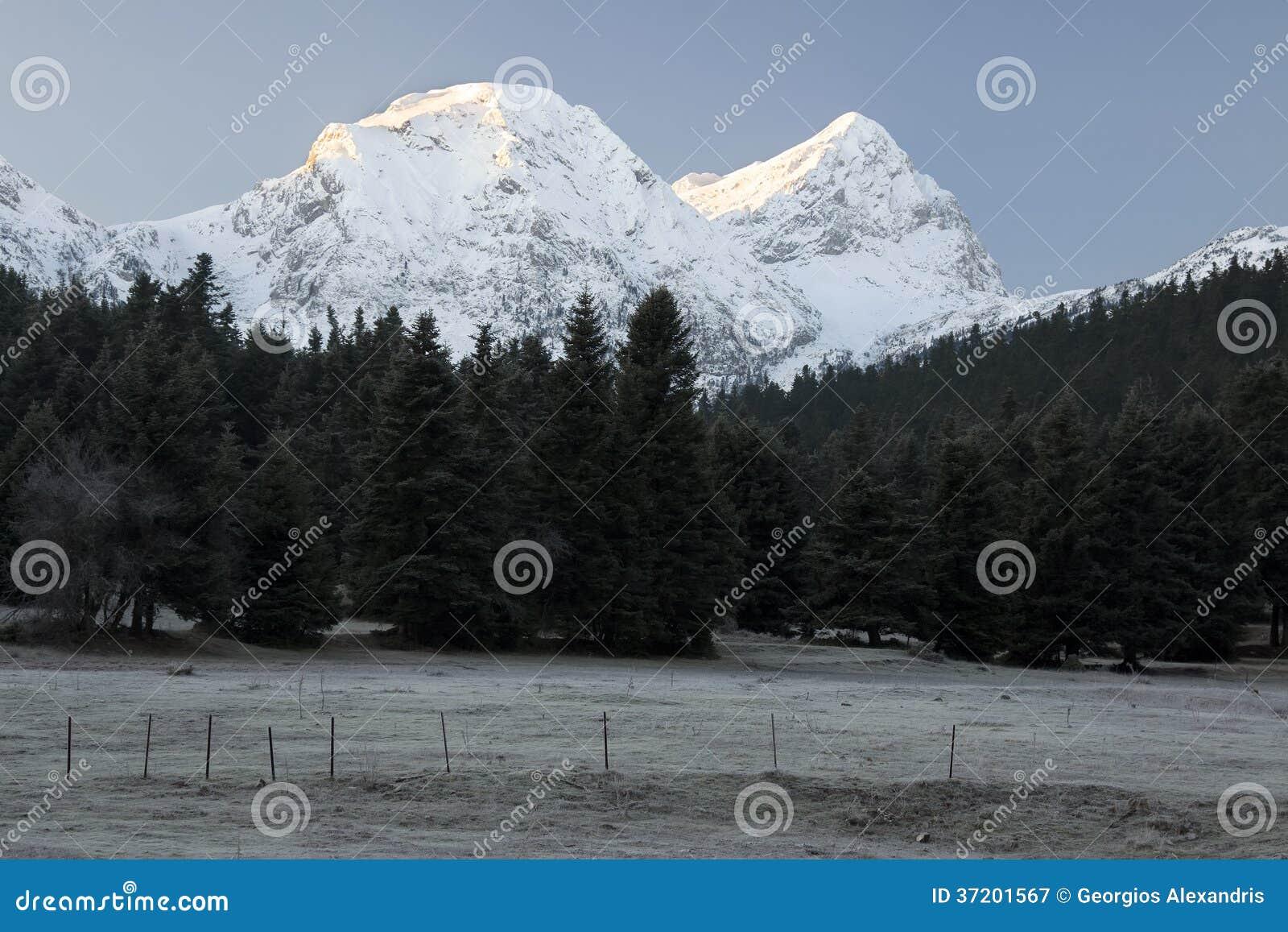 Snowcapped Imágenes De Stock Snowcapped Fotos De Stock: Snowcapped Summits Of Mount Giona, Greece Stock Image