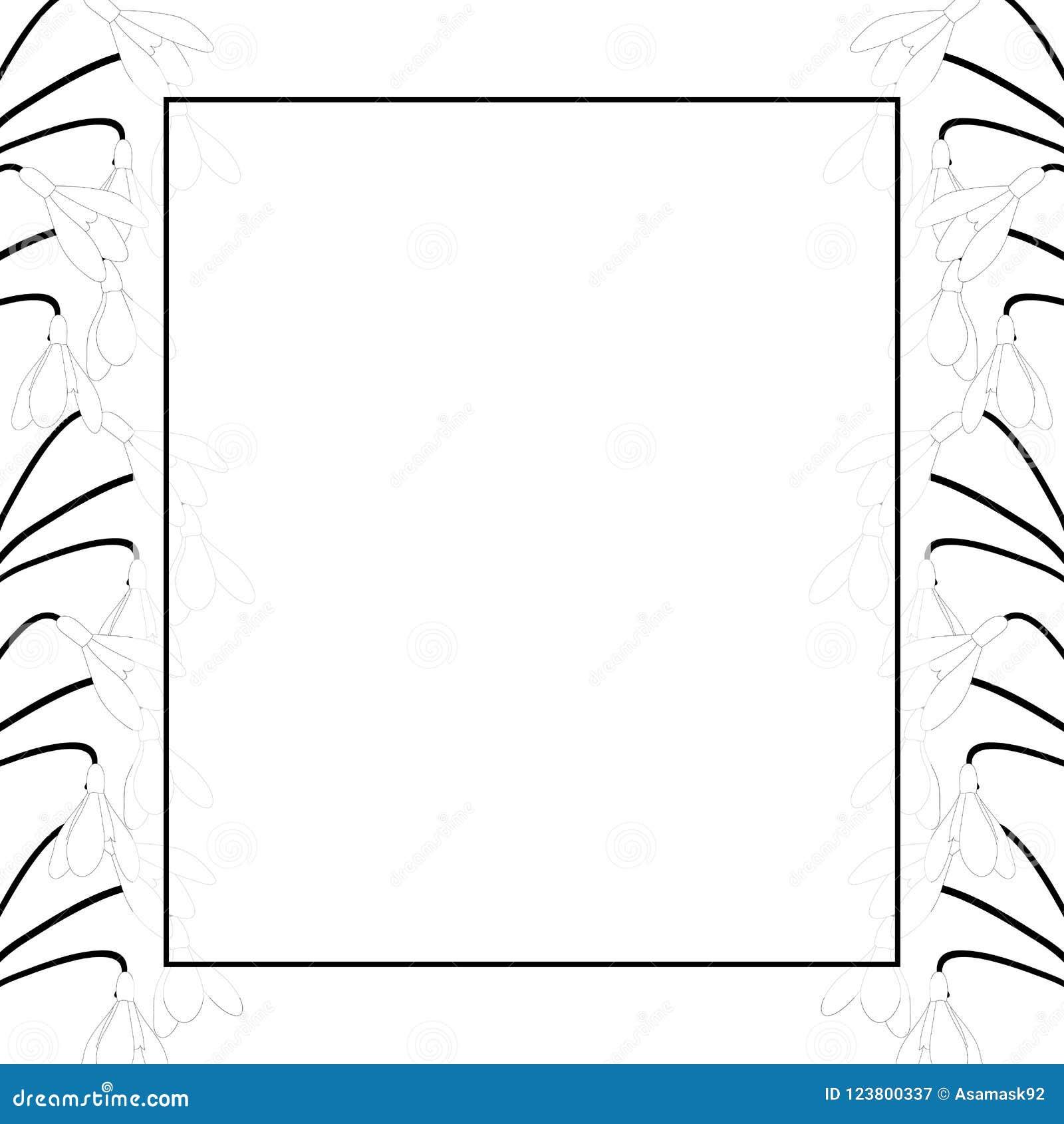 Snowdrop Flower Outline Banner Card Border Vector Illustration