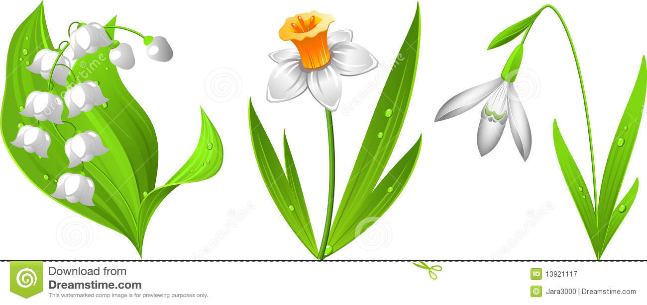 Lily of The Valley Border Clip Art Lily of The Valley Border Clip