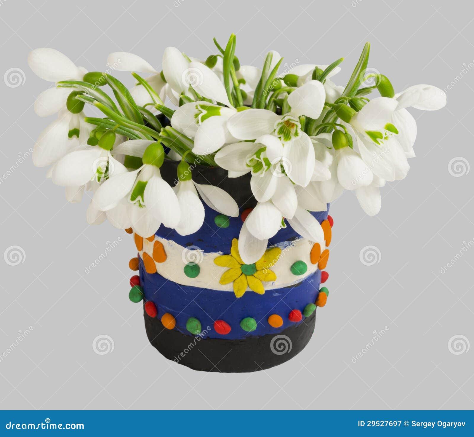 Snowdrops no vaso