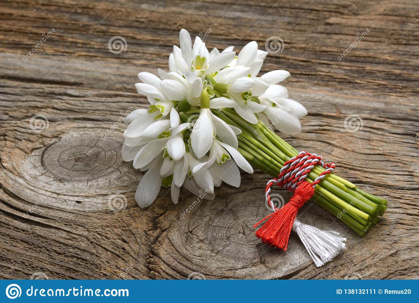 Snowdrops, 1st of March tradition white and red cord martisor isolated on wooden background