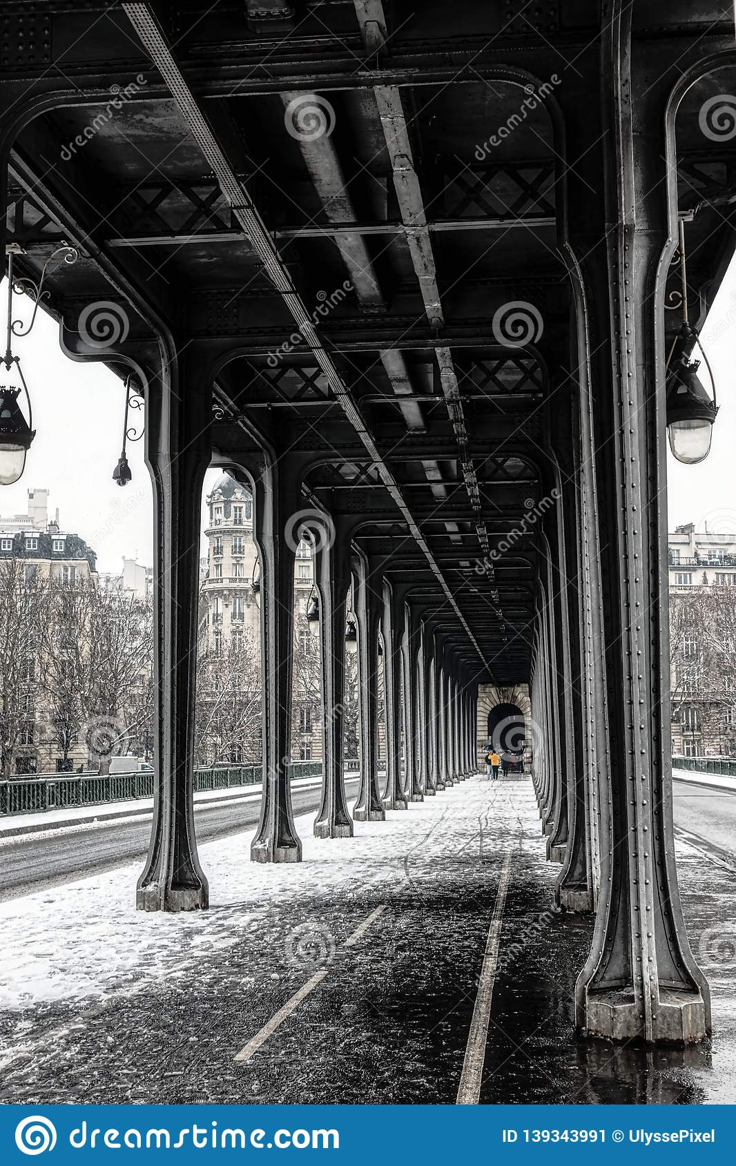 Snowfall over Pont de Bir-Hakeim - Paris, France