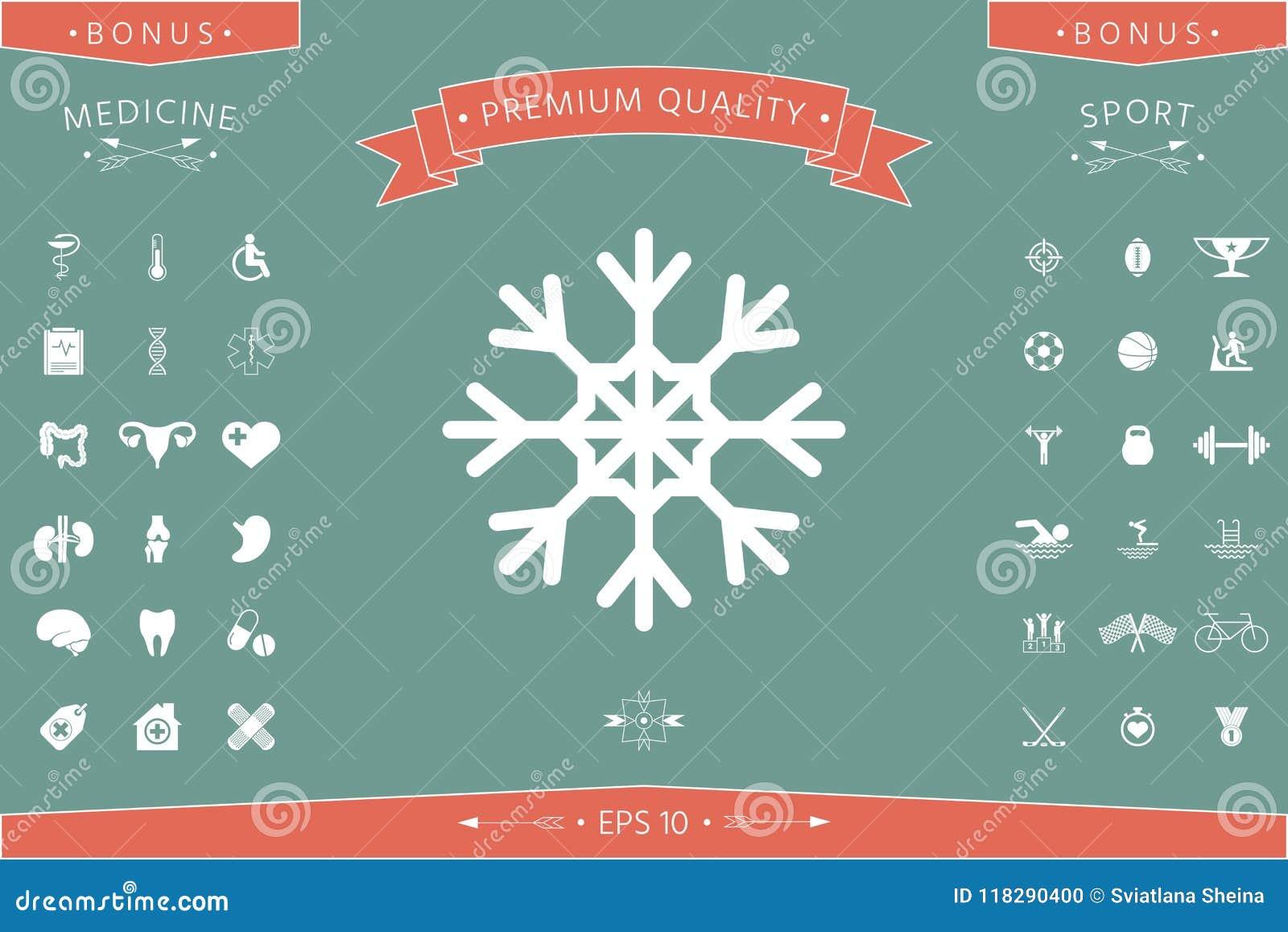 Snowflake Icon Symbol Stock Vector Illustration Of Icon 118290400