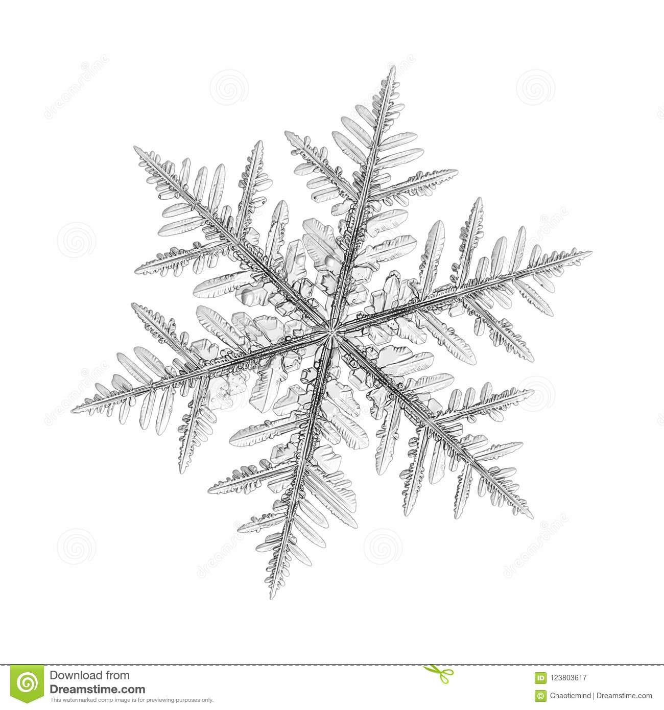 Real snowflake isolated on white background