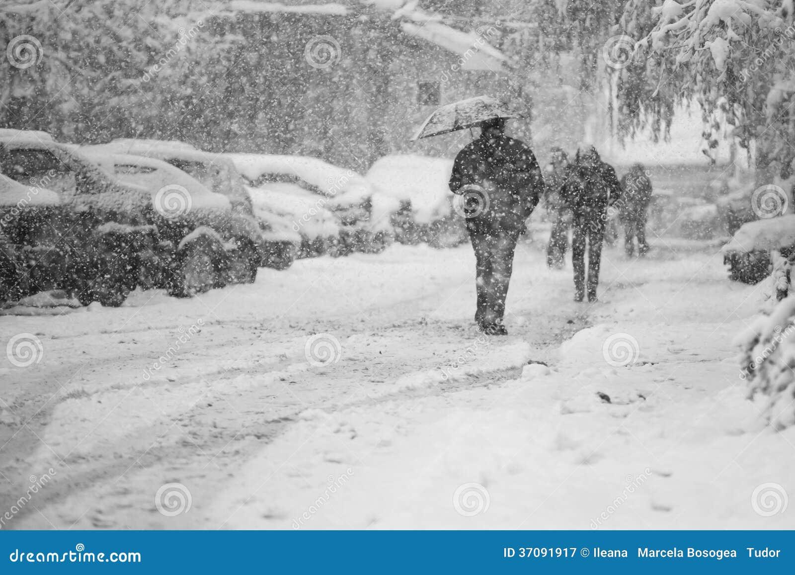 Download Snowing Miastowy Krajobraz Z Ludźmi Przechodzi Obok Obraz Stock - Obraz złożonej z piękny, snowflakes: 37091917