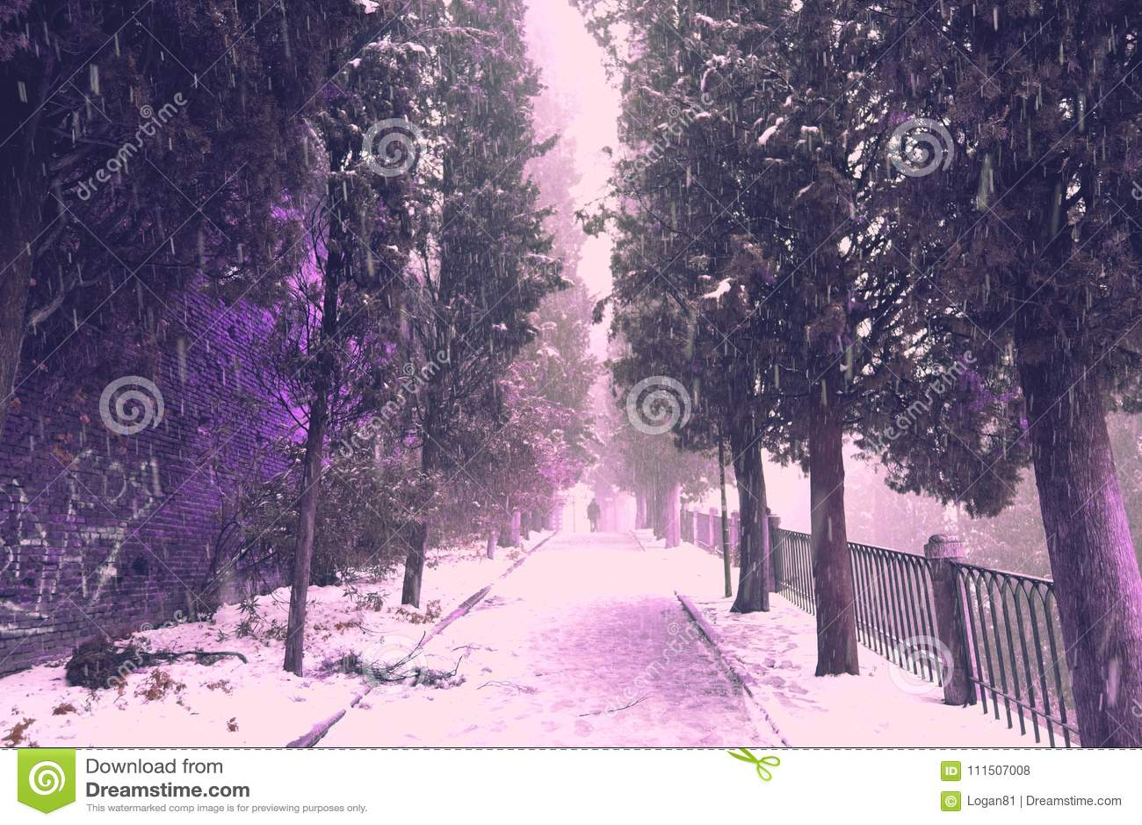 Snowing in Verona town, Italy