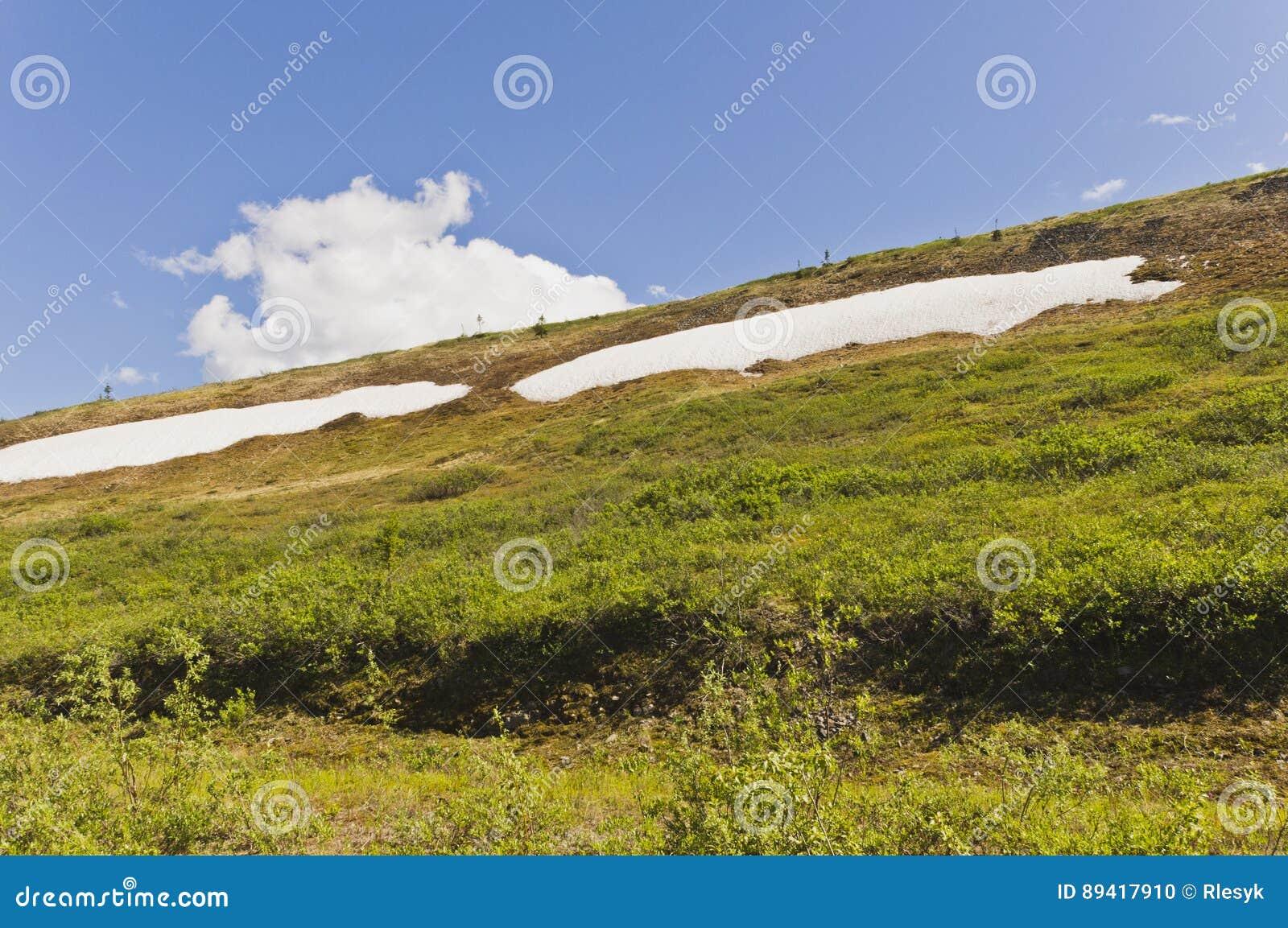 Snowpacks da montanha