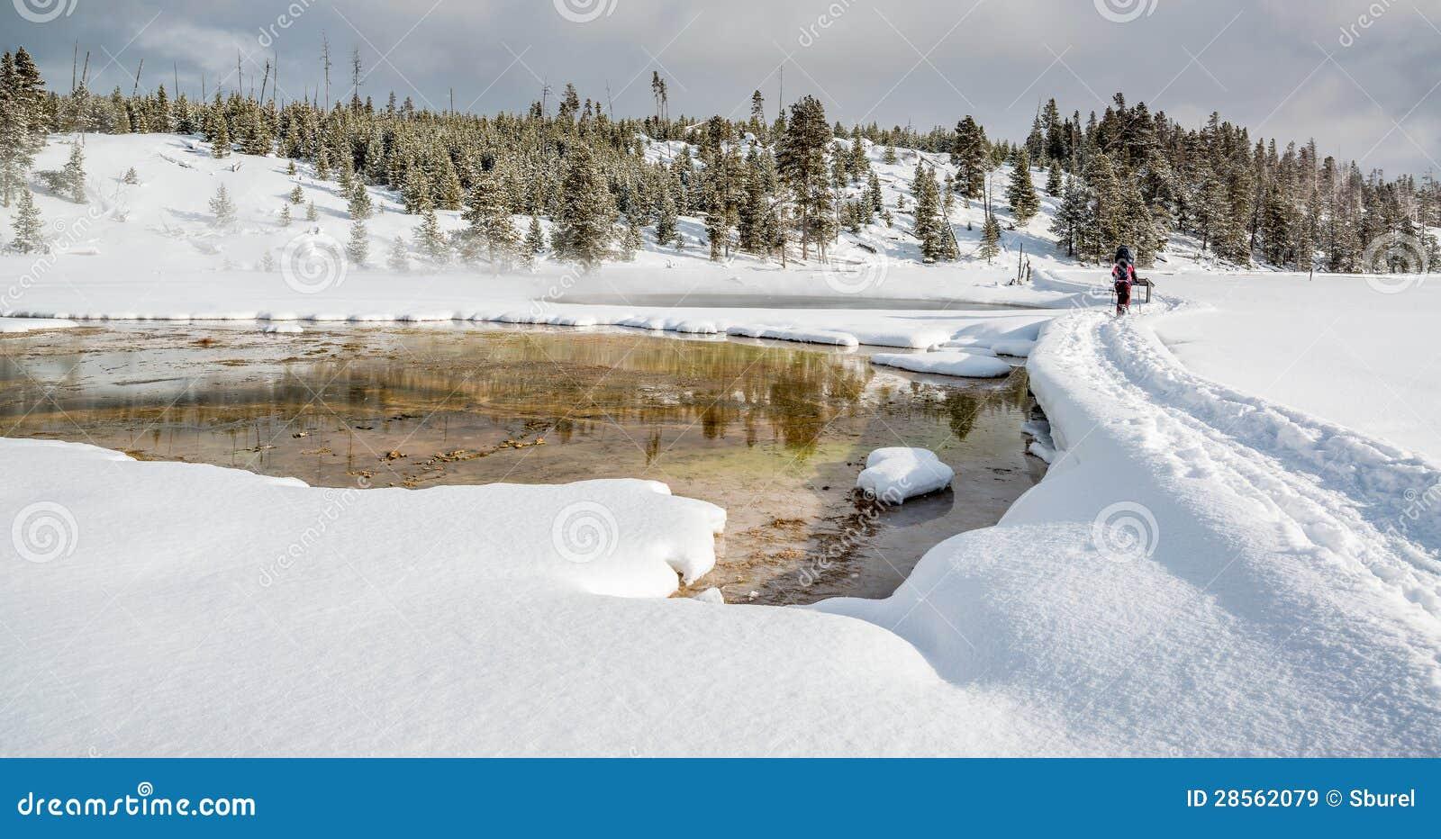 Snowshoeing в Йеллоустоне