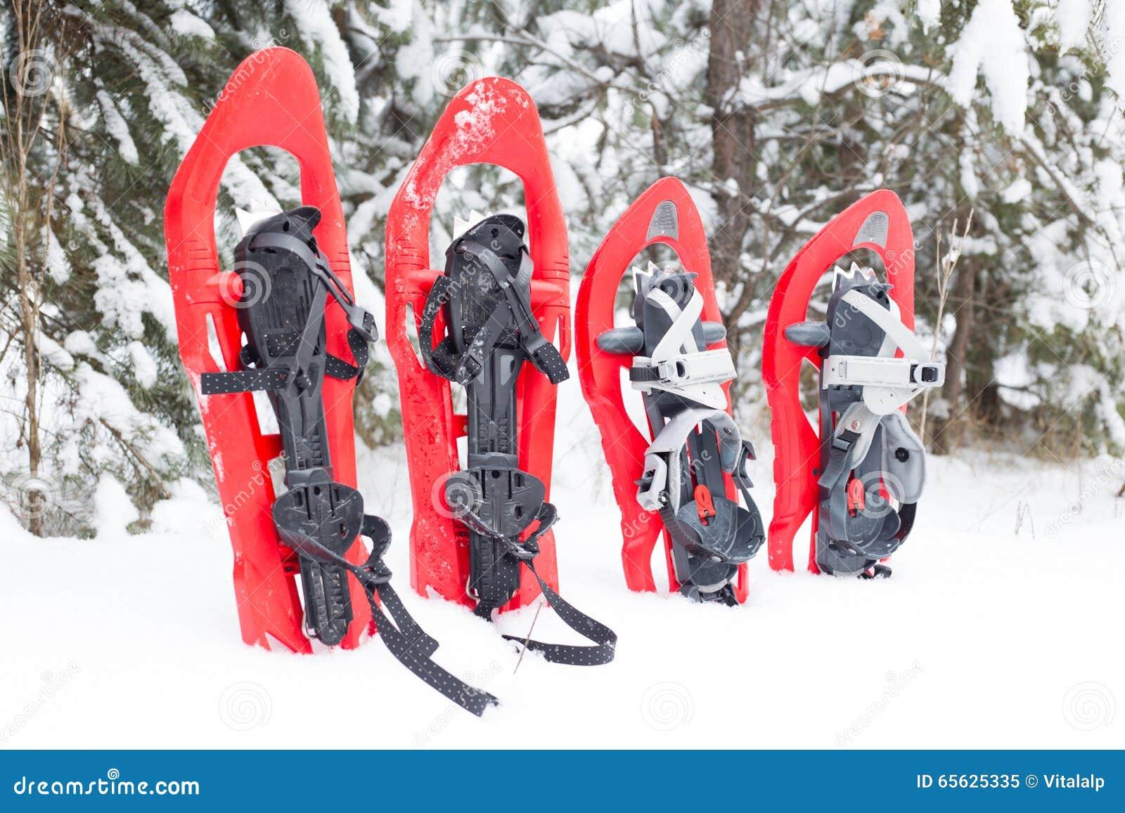 Snowshoeing Raquettes dans la neige