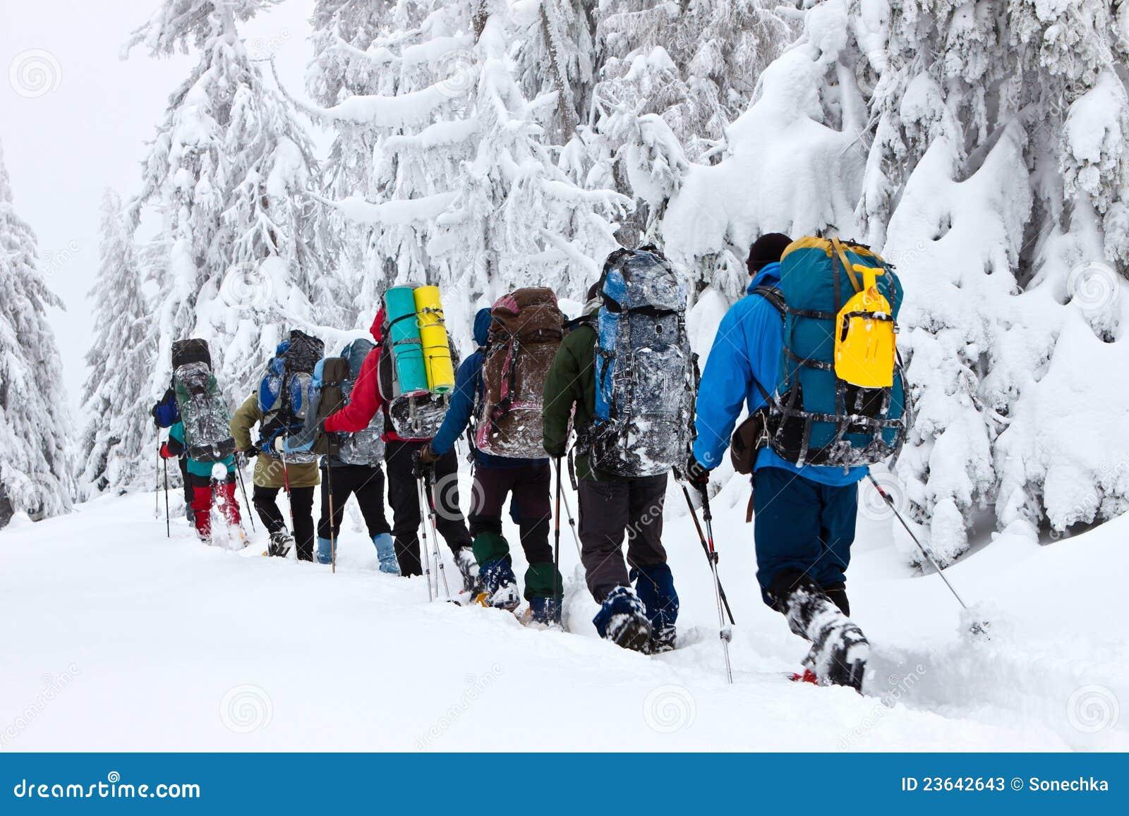 Snowshoeing vinter