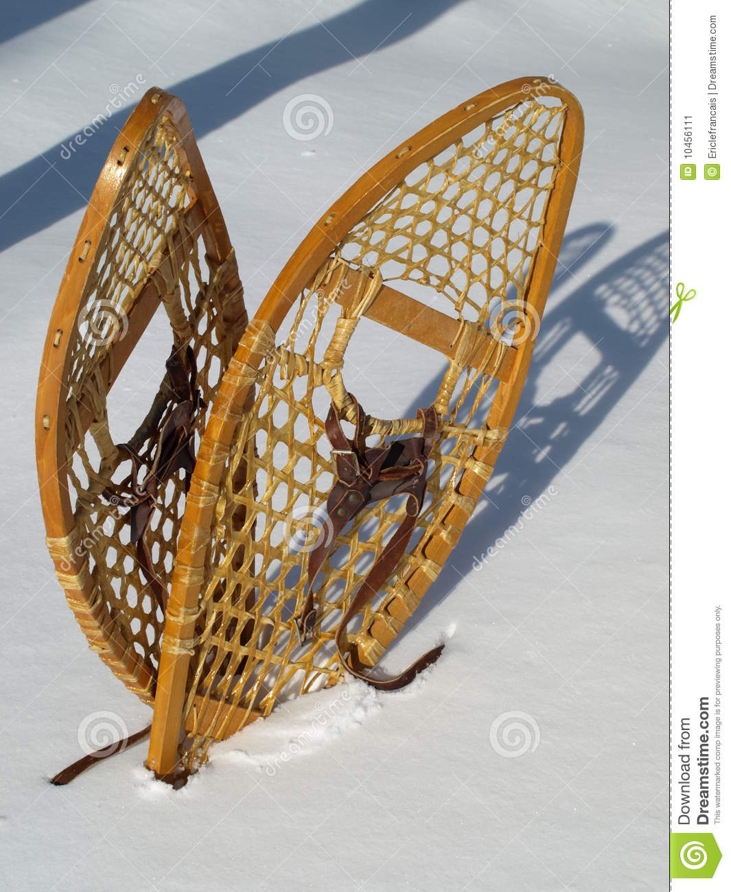 Snowshoes Stock Image Image 10456111