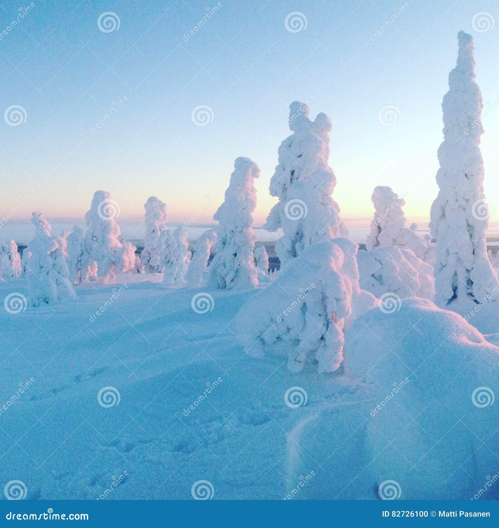 Snowthrees