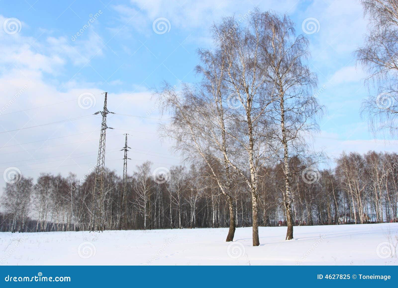 Snowwhite land