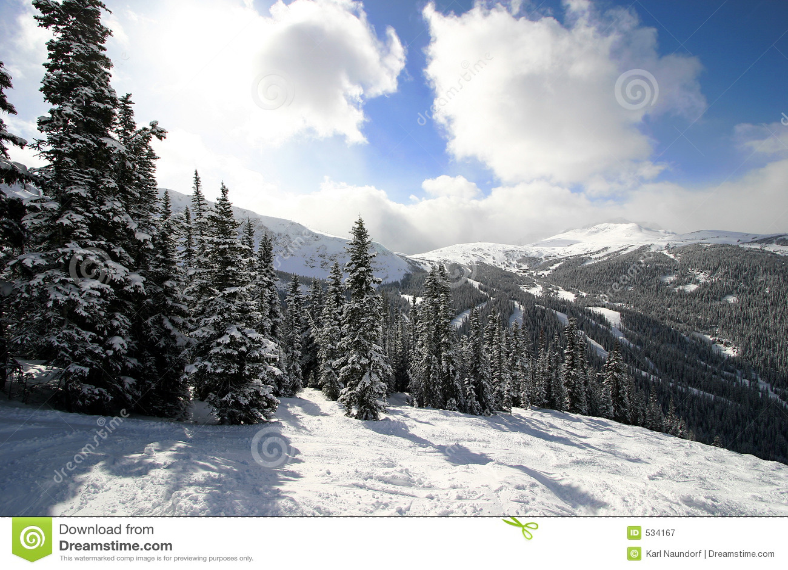 Snowy-alpiner Wald