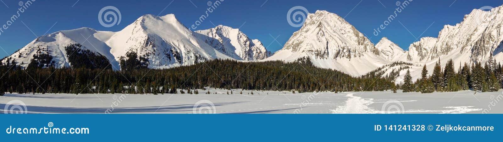 Snowy-Bergspitze-panoramische Landschaftskalter Winter Kananaskis Alberta Canada