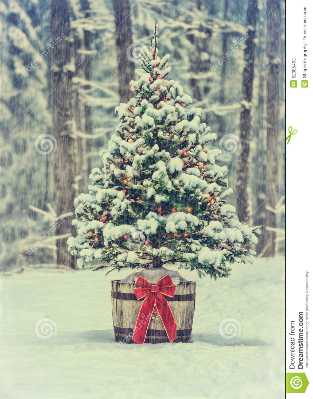 Snowy Christmas Tree With Colorful Lights In A Forest - Vintage ...