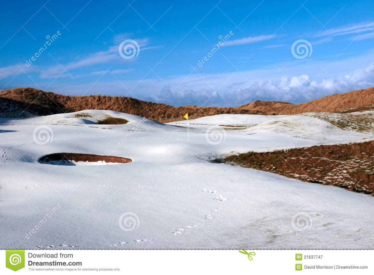 Snowy covered links golf course with yellow flag
