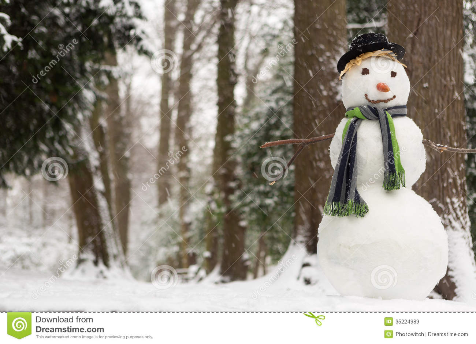 Snowy Day Snowman Winter