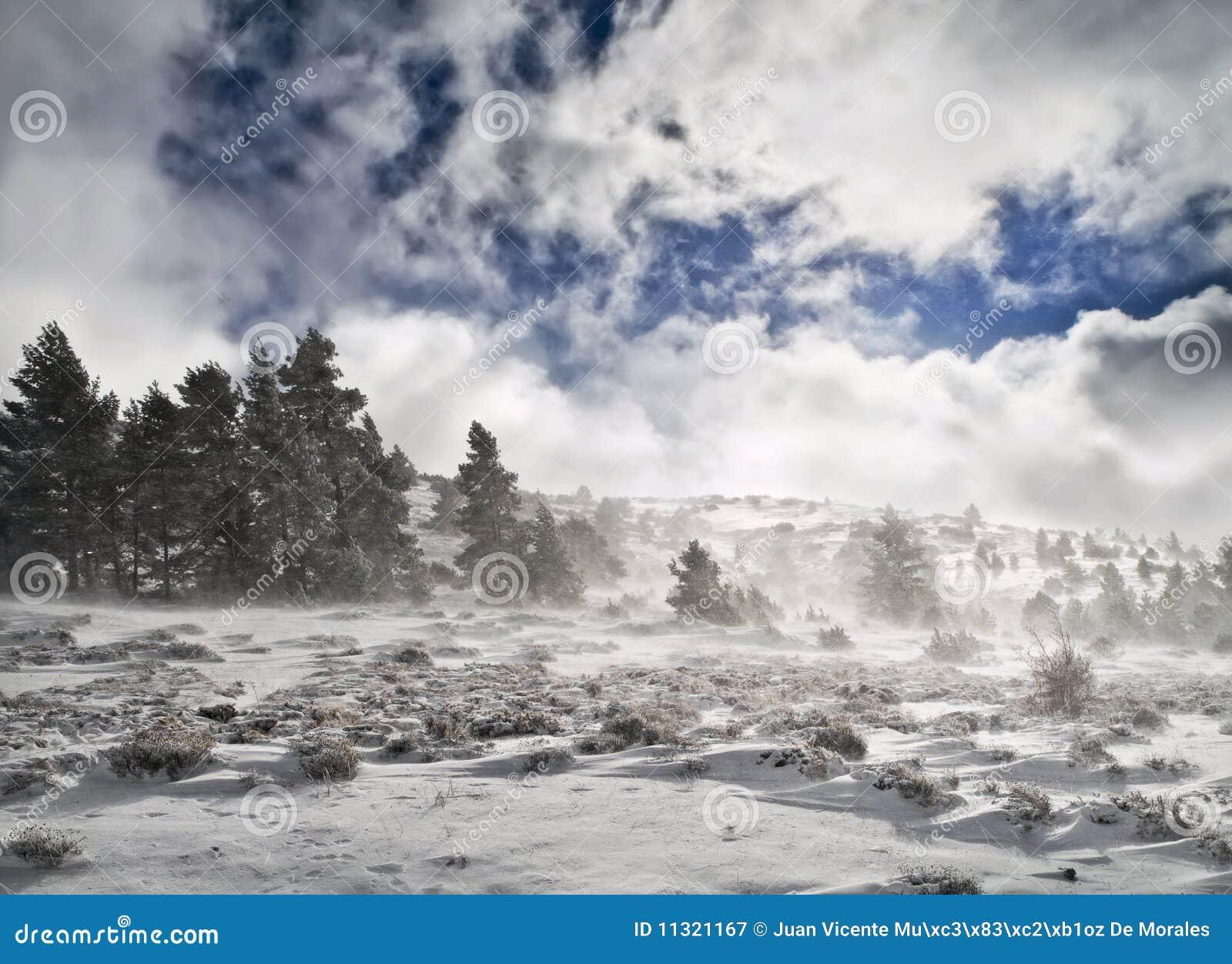 Snowy-Landschaft