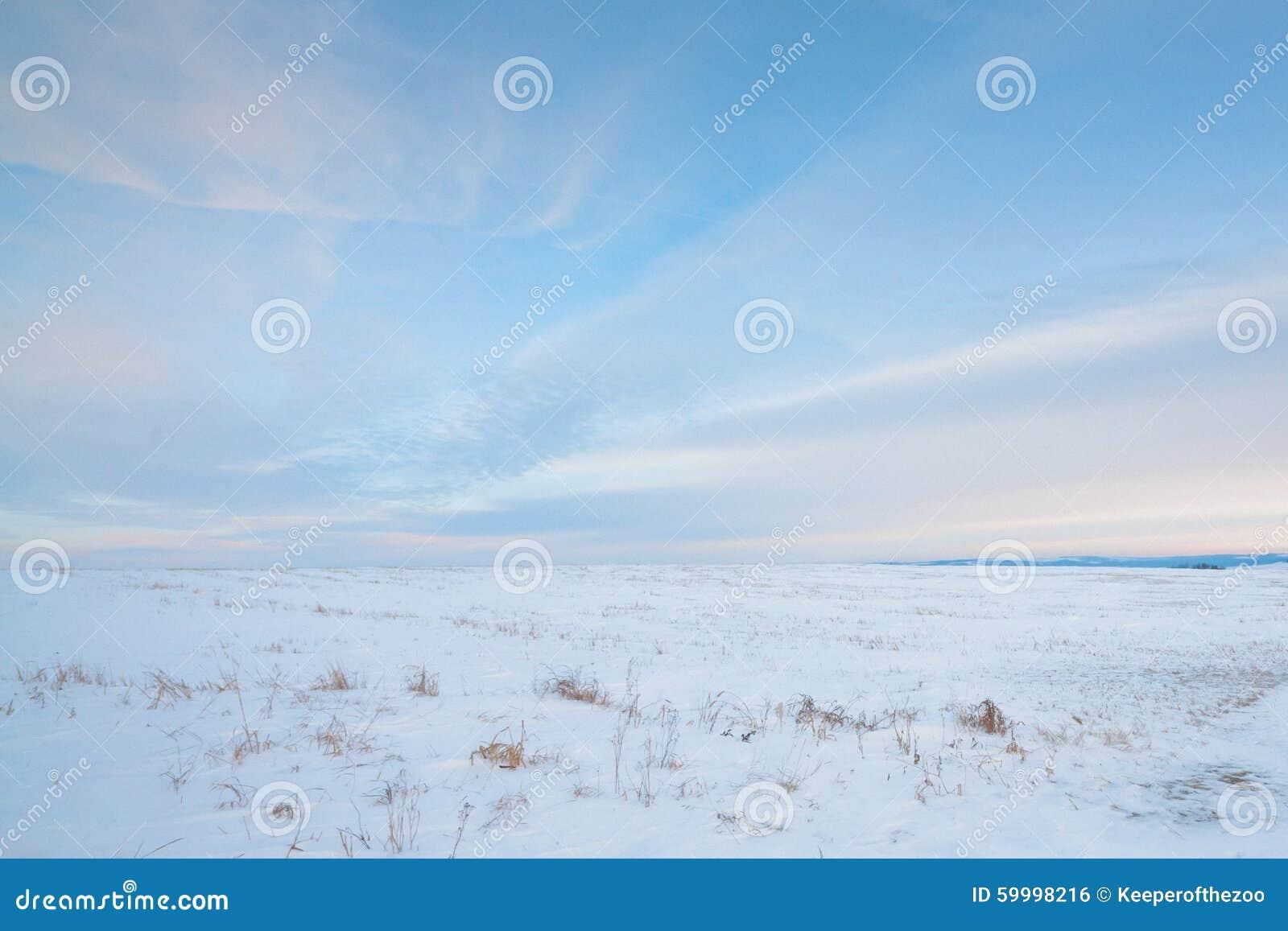 Download Snowy Prairie stock photo. Image of beautiful, meadow - 59998216