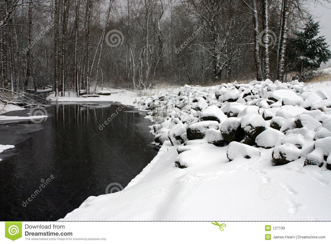 Download Snowy river. stock image. Image of freeze, forest, blanket - 127139