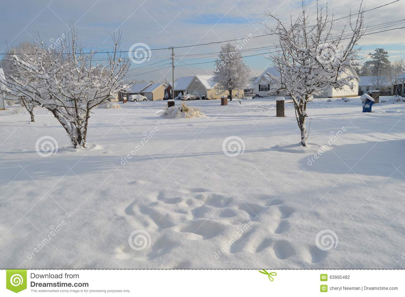Snowy weather stock photo  Image of snowy, weather