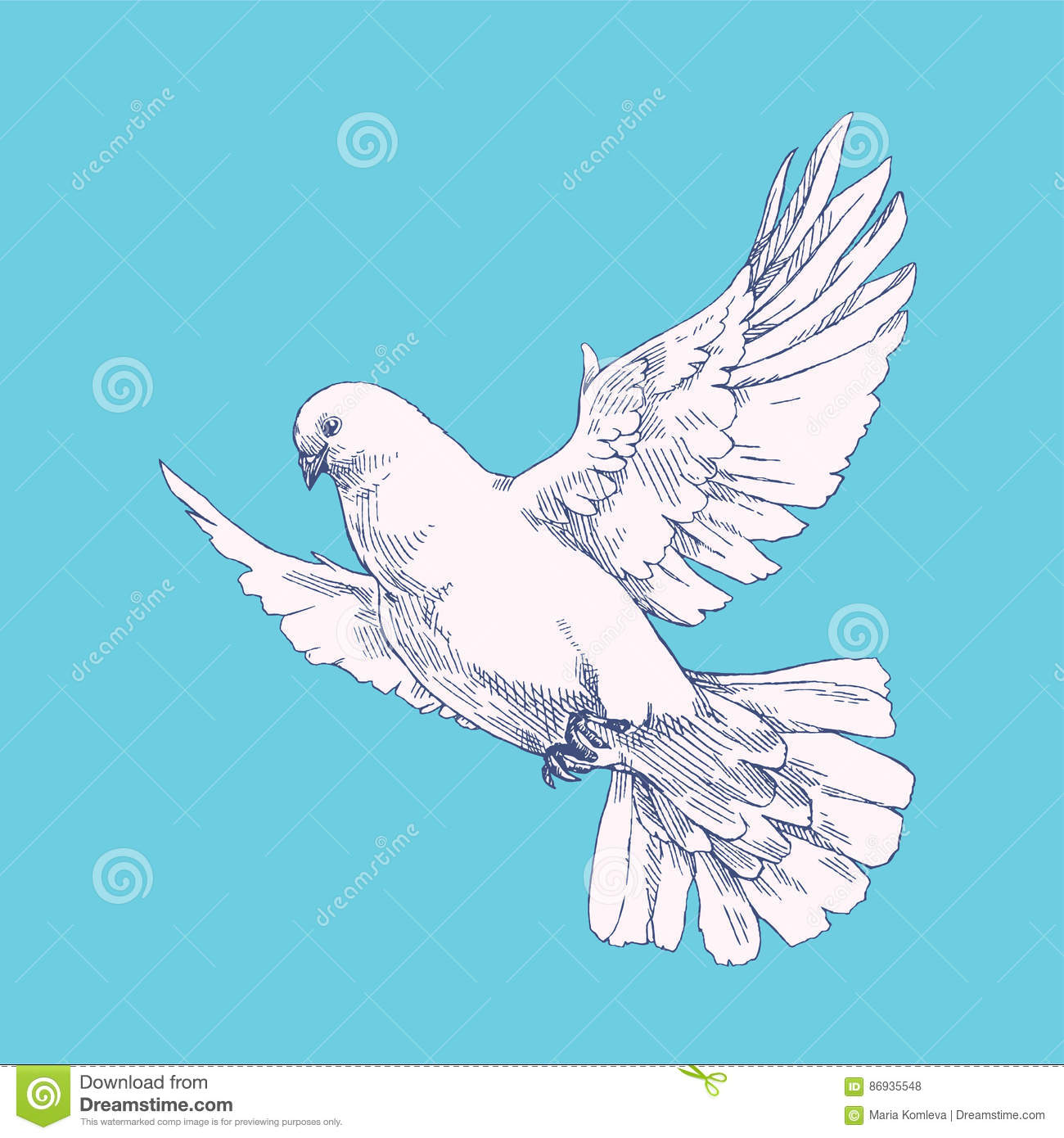 Pigeon illustration - photo#36