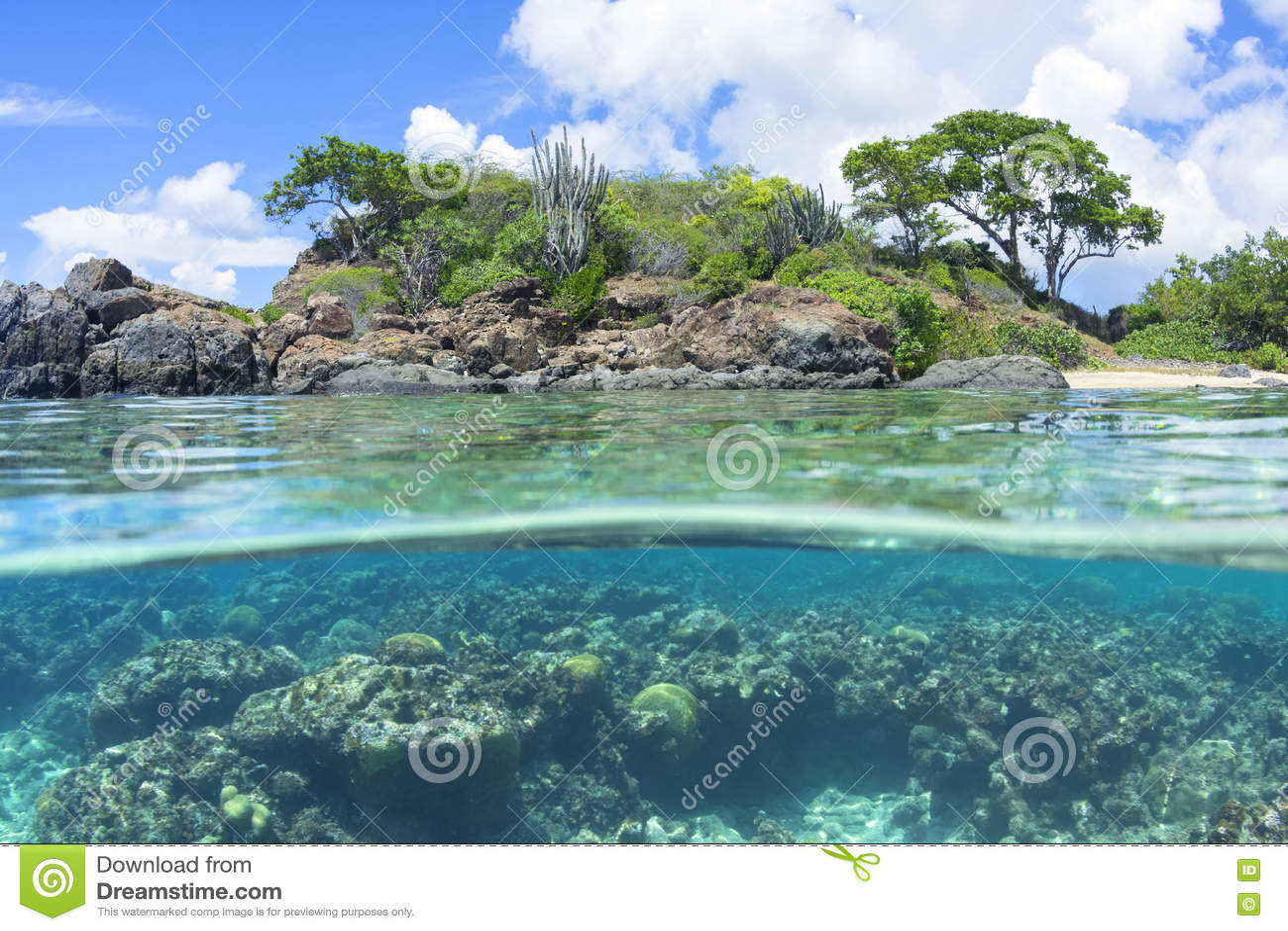 Sobre a ilha das Caraíbas e o recife inferiores