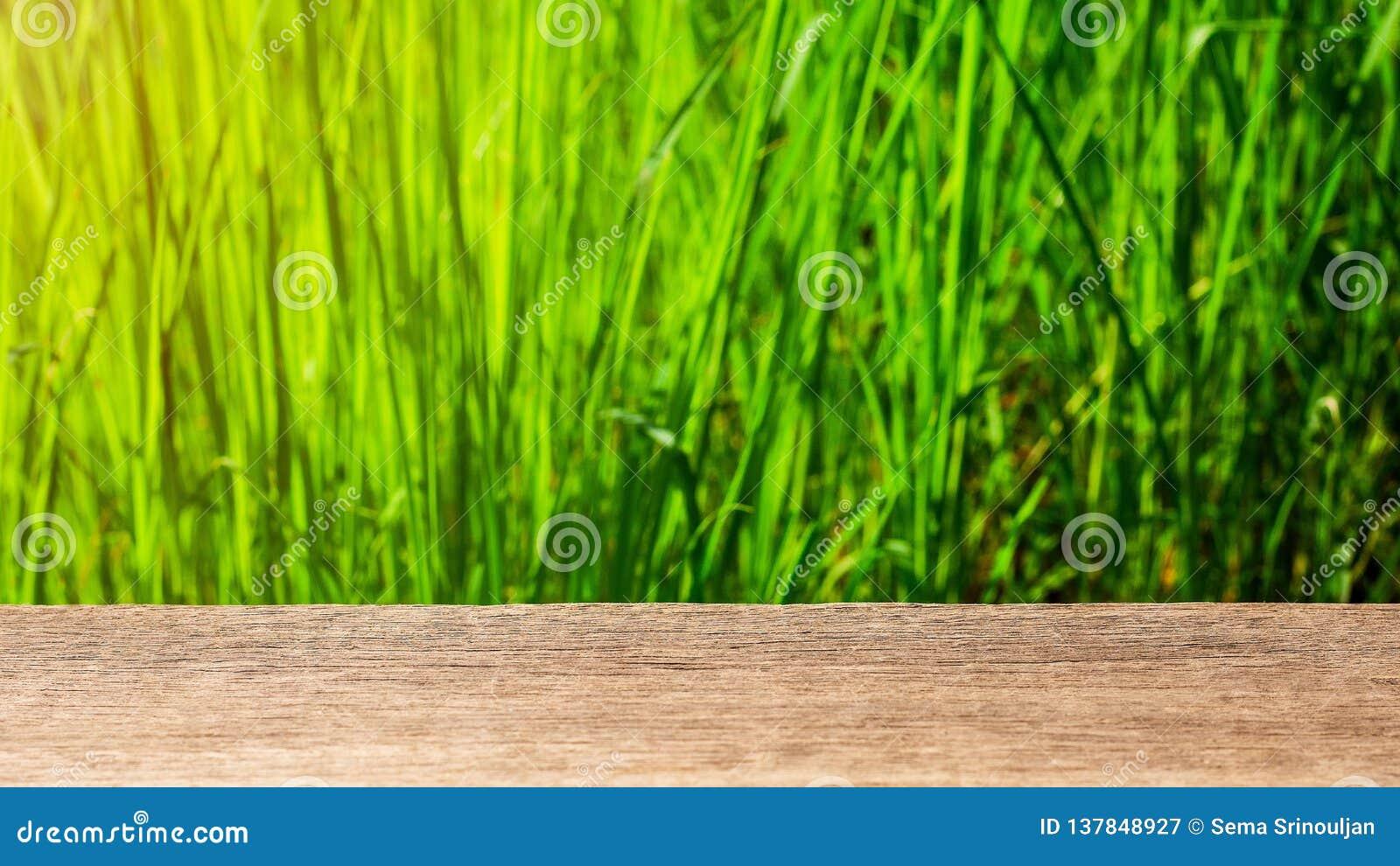 Sobremesa de madera vac?a en verde del extracto de la falta de definici?n del jard?n
