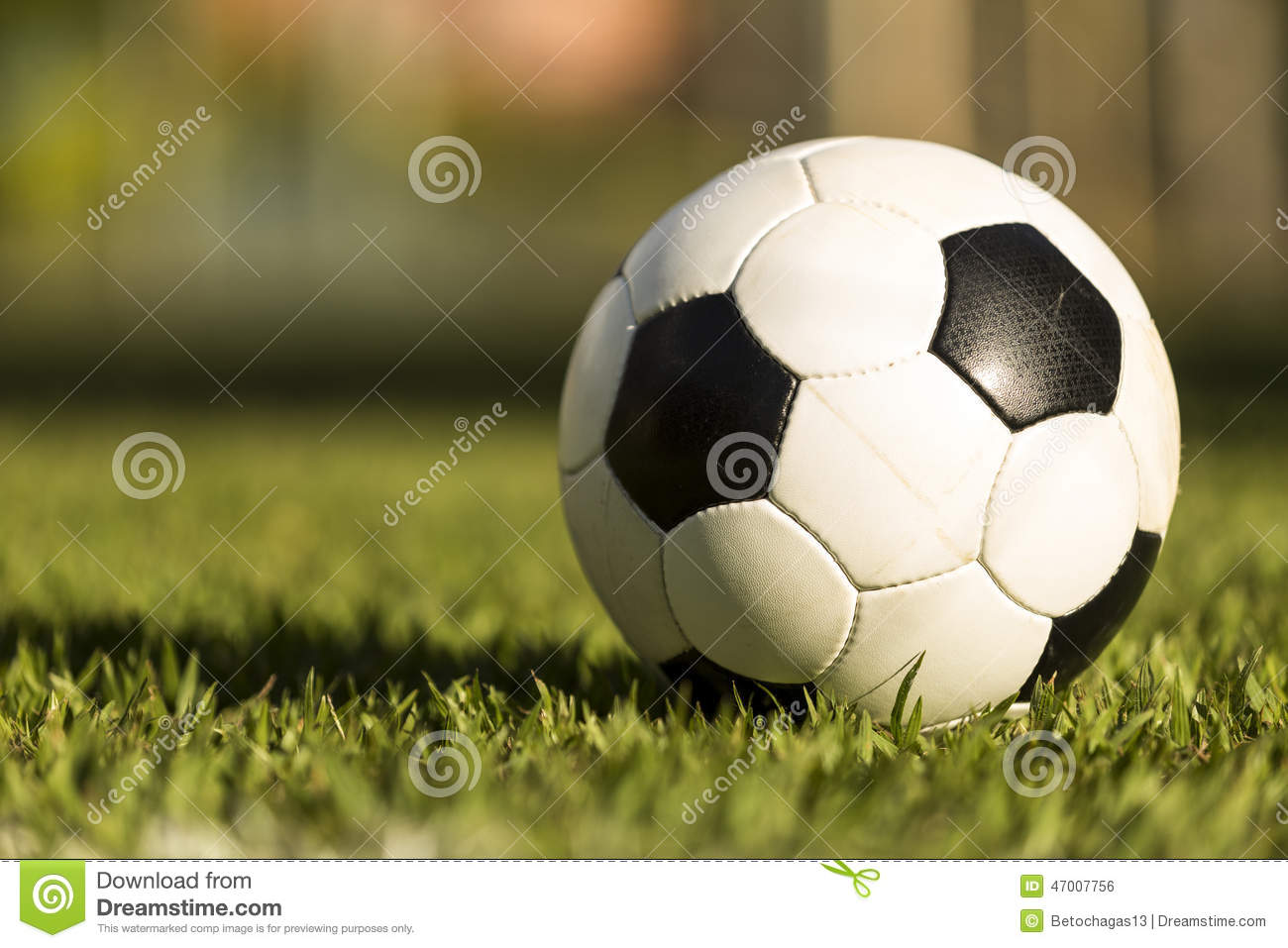 Soccer ball on a grass field.