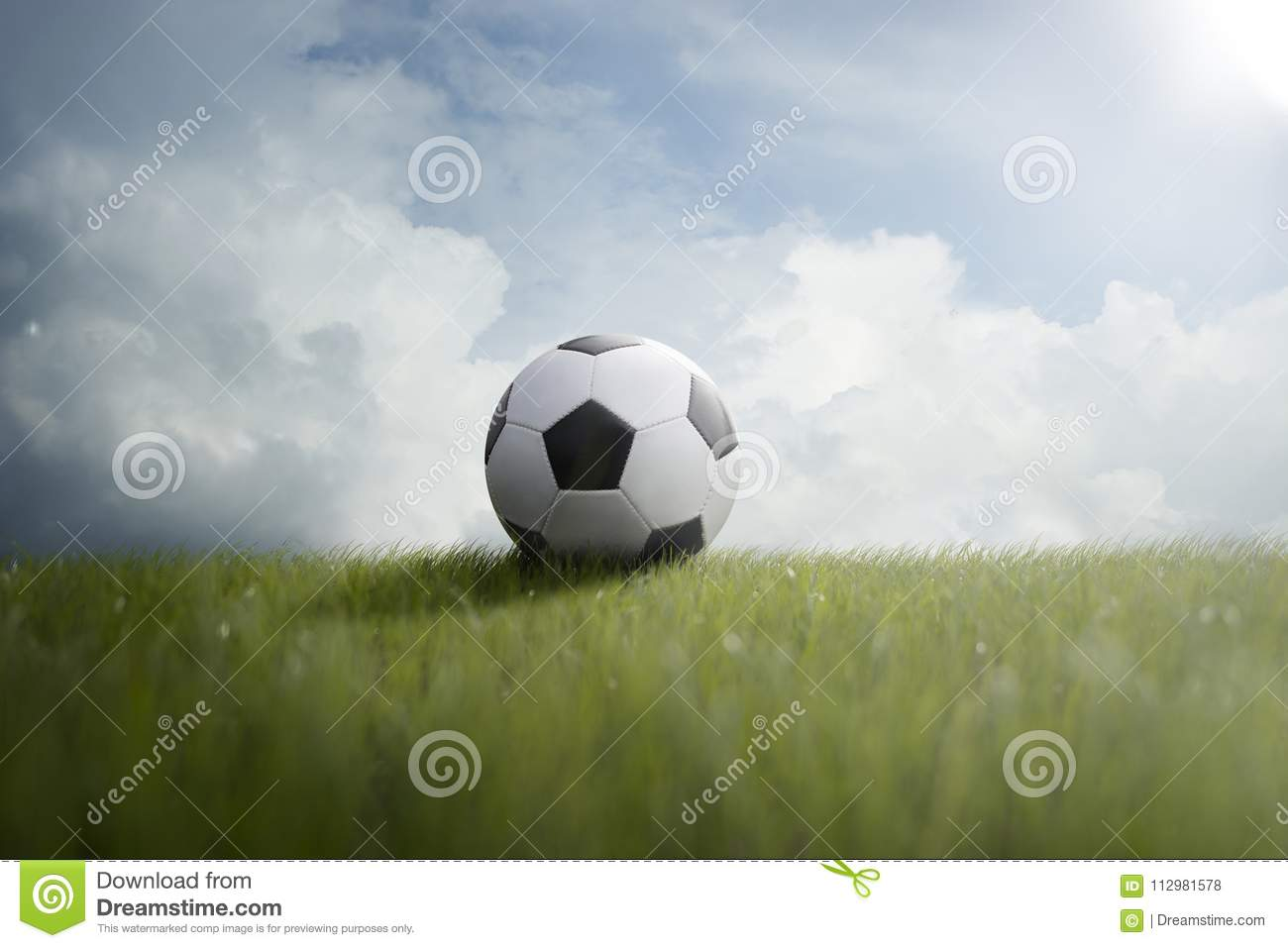 Soccer ball on the lawn