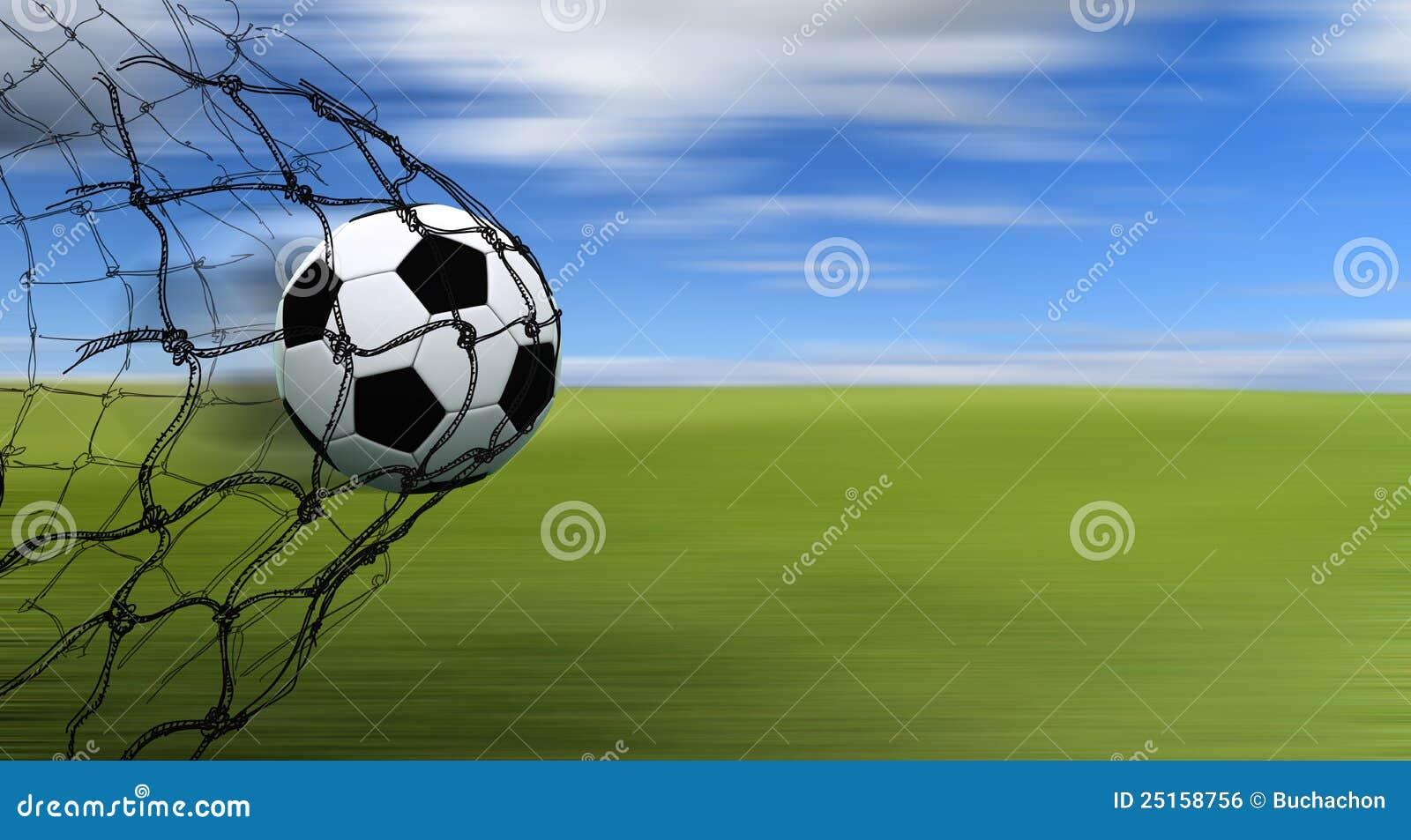 Soccer Ball In A Net R...