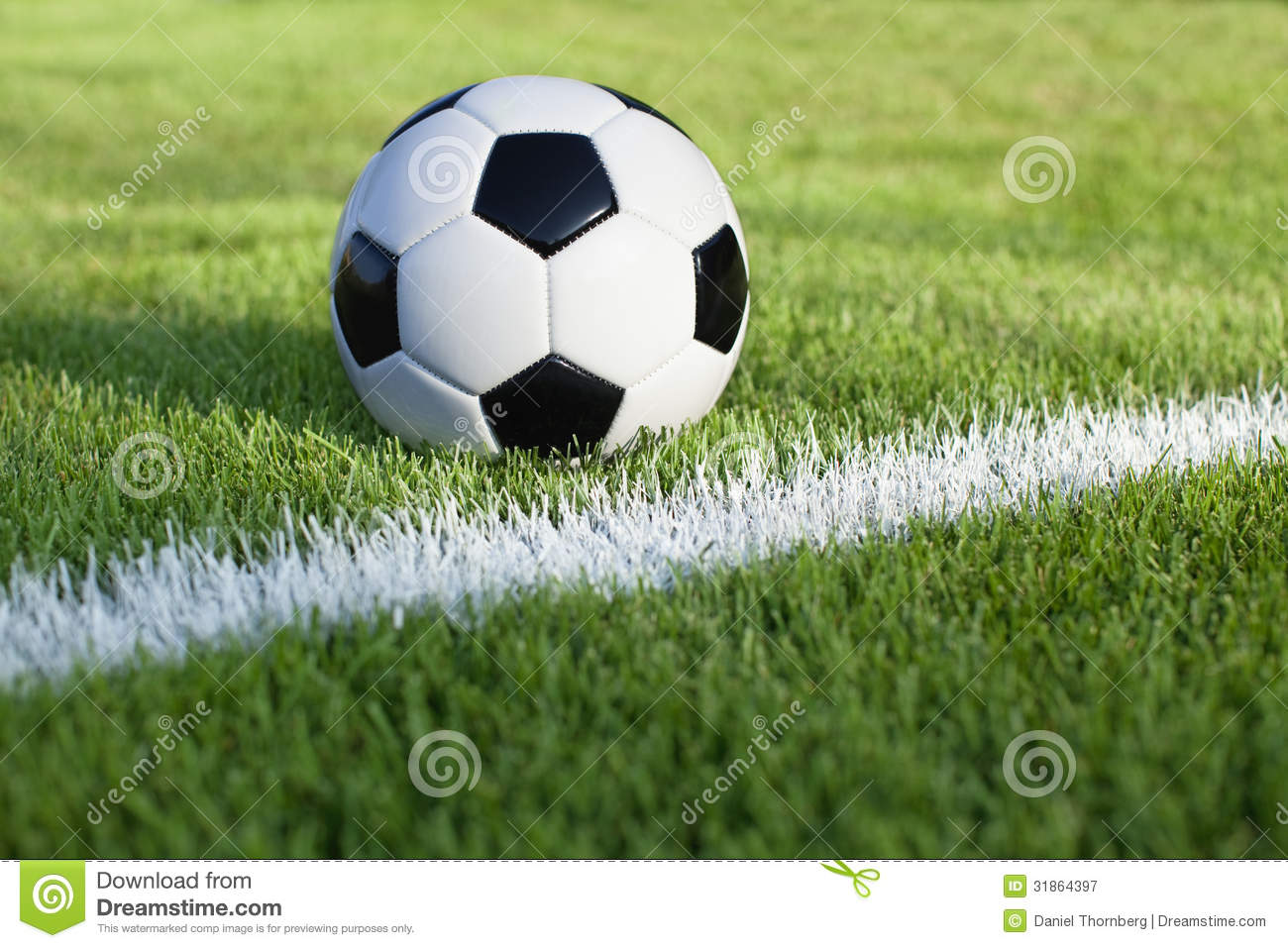 Soccer ball sits on grass field with white stripe