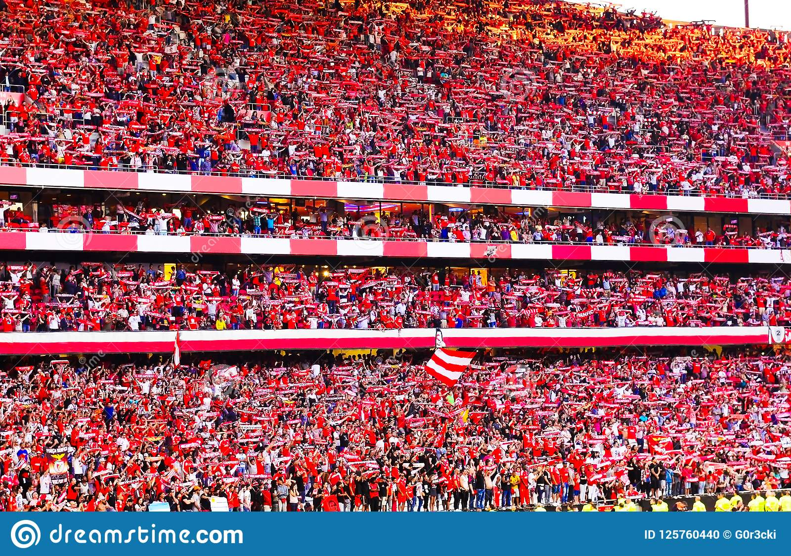 Soccer Fans, Red Crowd, Benfica Stadium, Football Champions