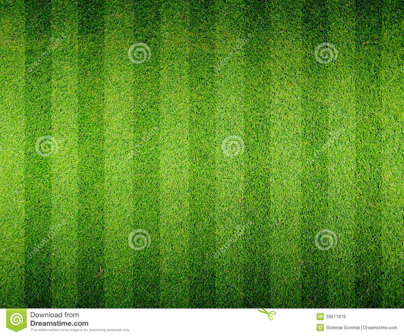 Soccer Football Grass Field Stock Photo