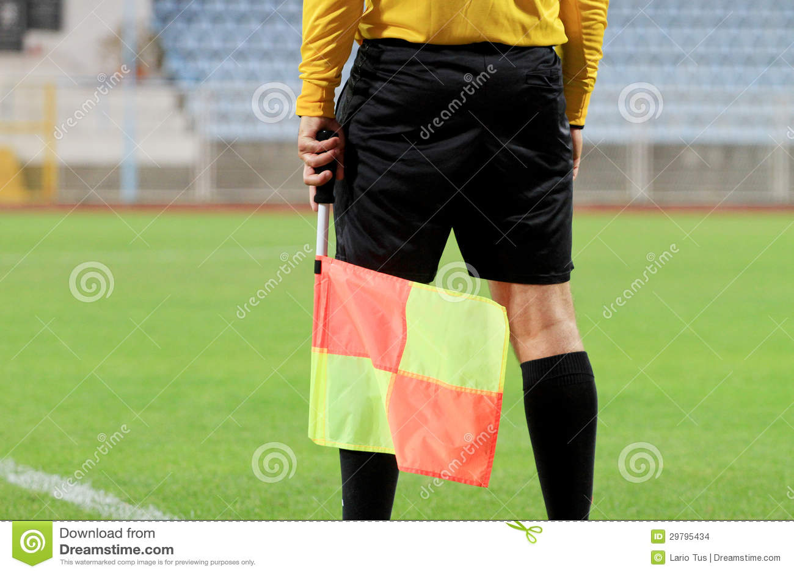informative speech soccer referee