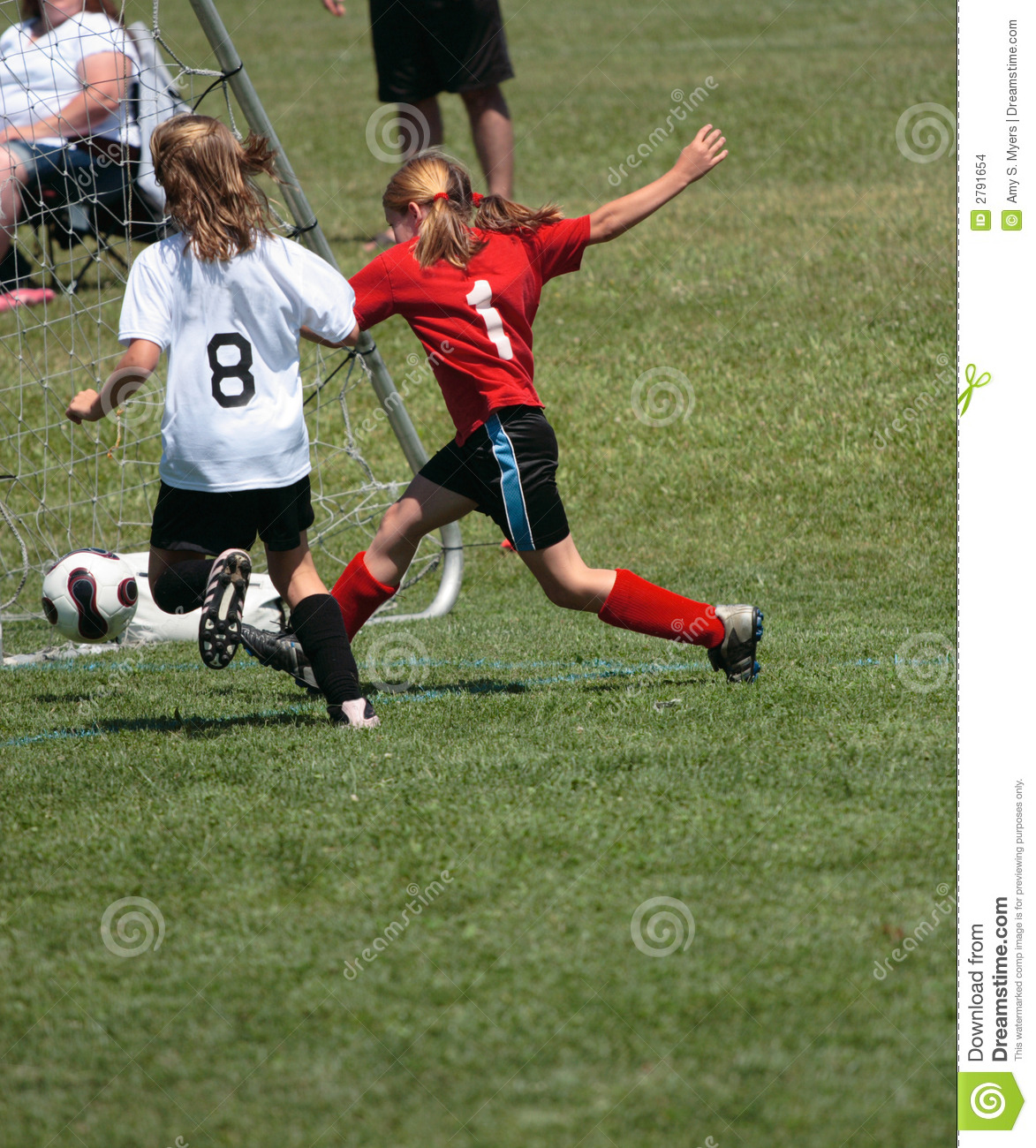 soccer player kicking goal stock images image 2791654