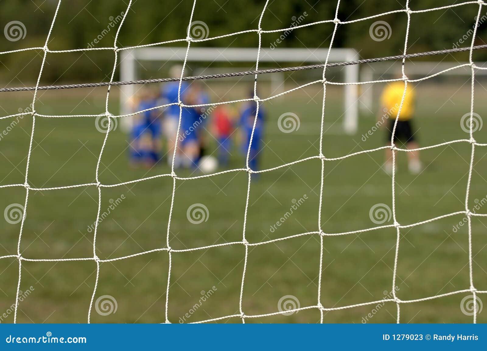 Soccer Team through net