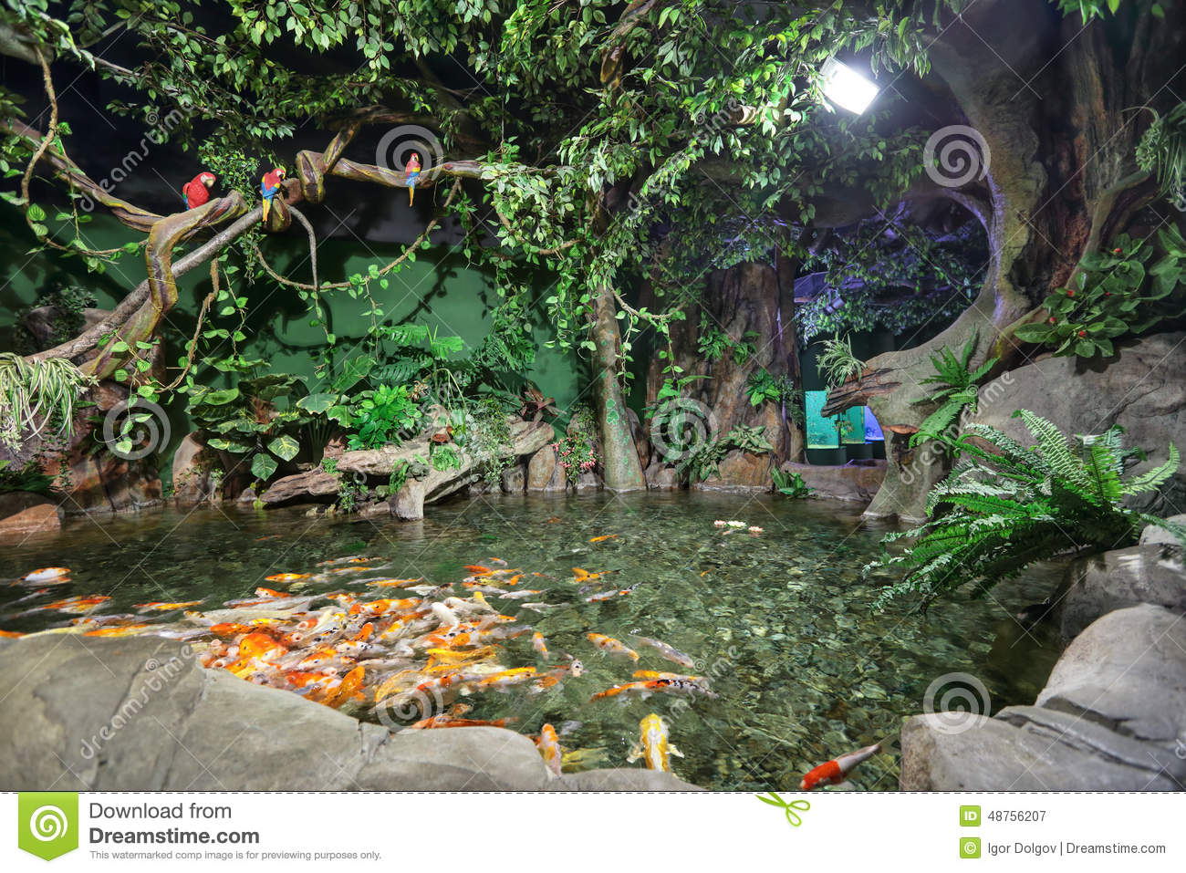 Adler Russia  City pictures : ... adler russia mar one main attractions adler largest russia koi