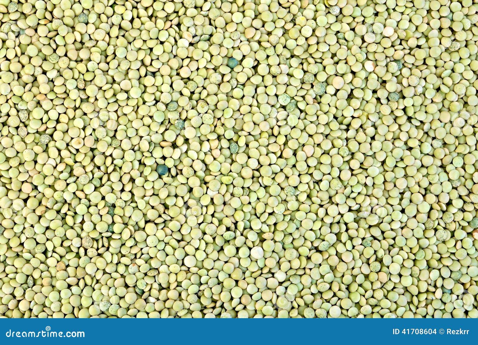 Soczewicy zielenieją teksturę