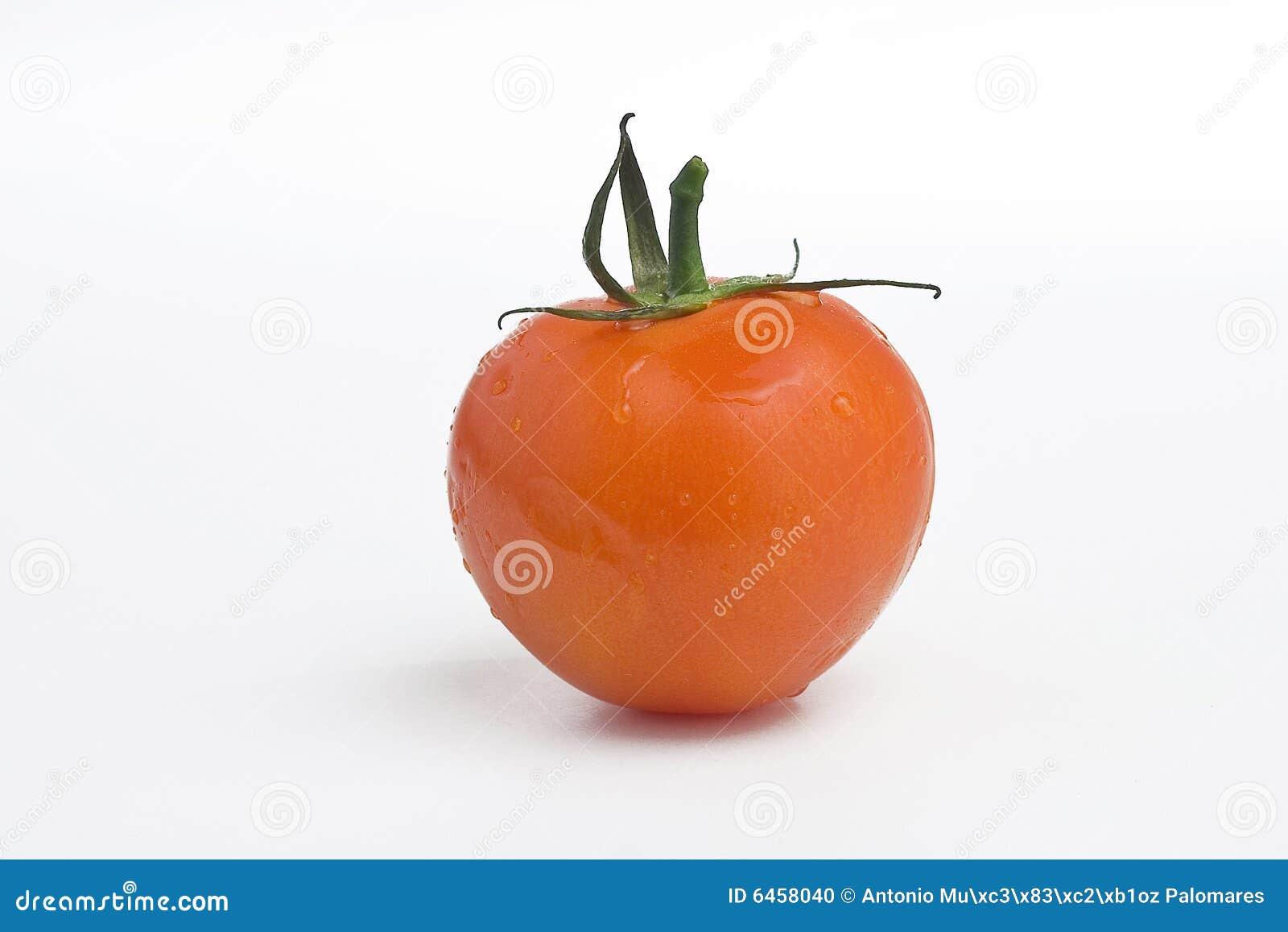 Soczyste pojedyncze pomidorów