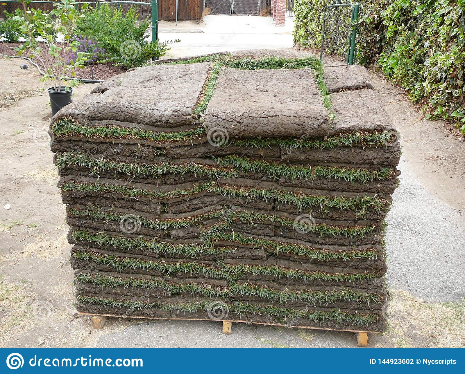 Sod Stacked for Lawn