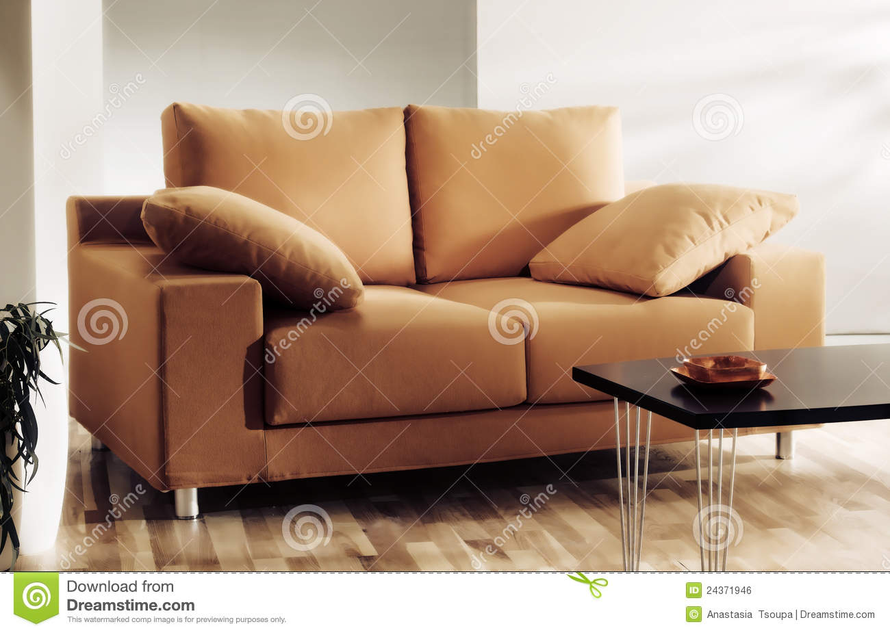 Sofa or couch in living room