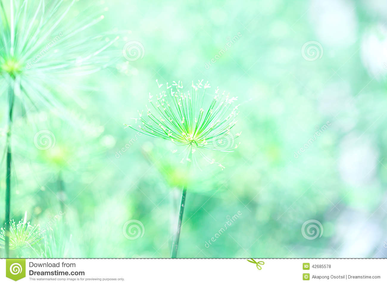 Soft green nature abstract background